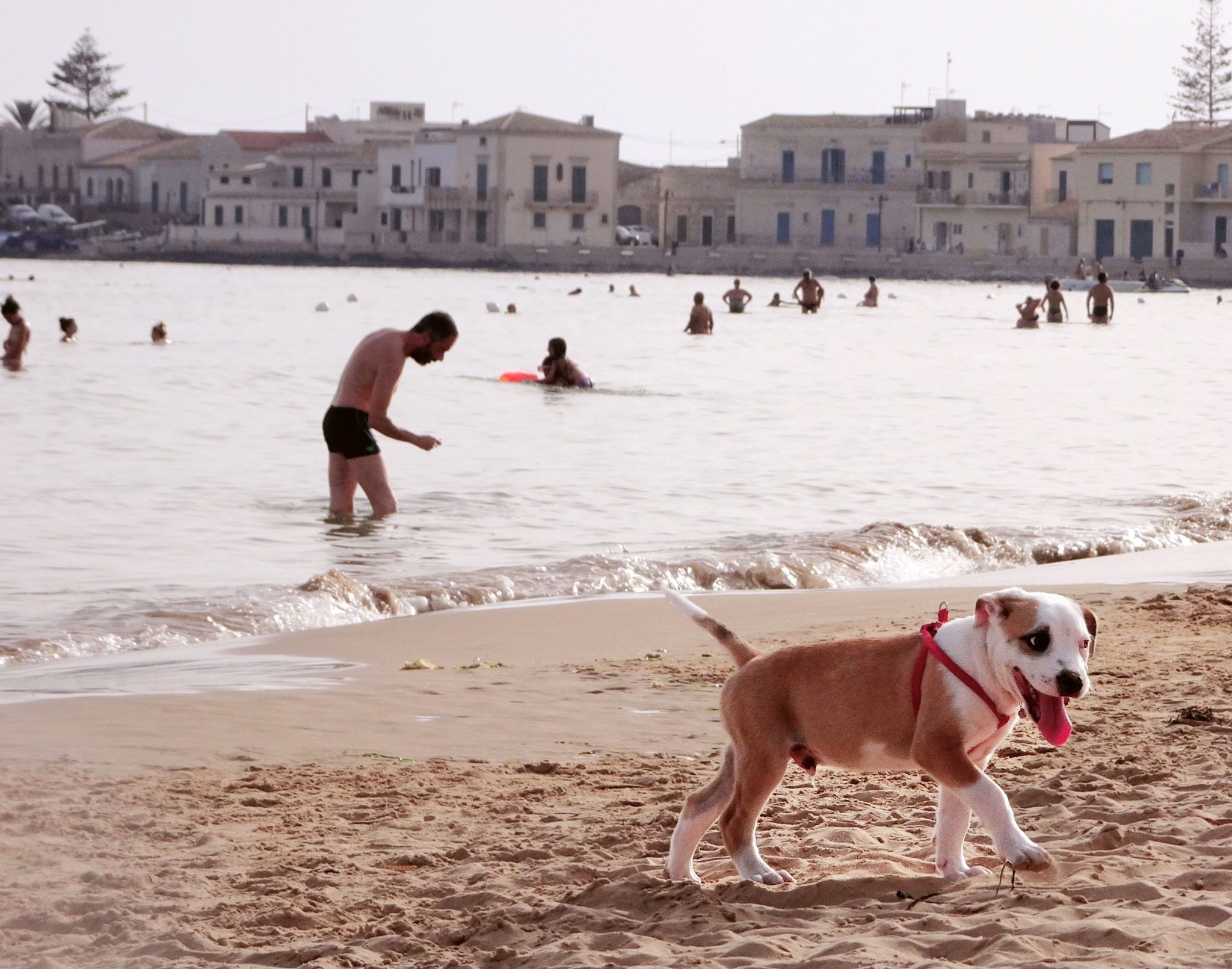 in spiaggia by Enzo Lucifora