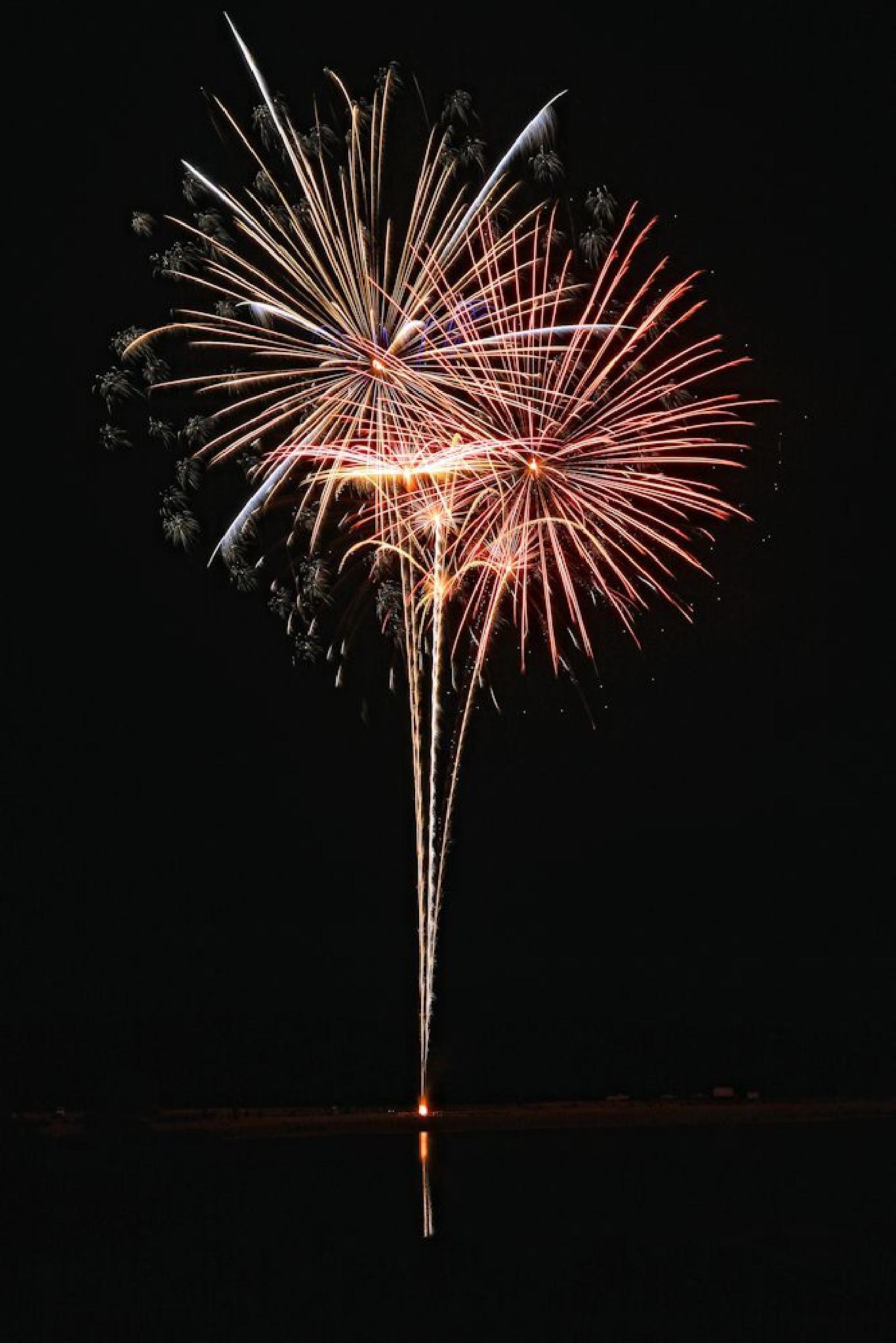 Fireworks! by Julie Gardner
