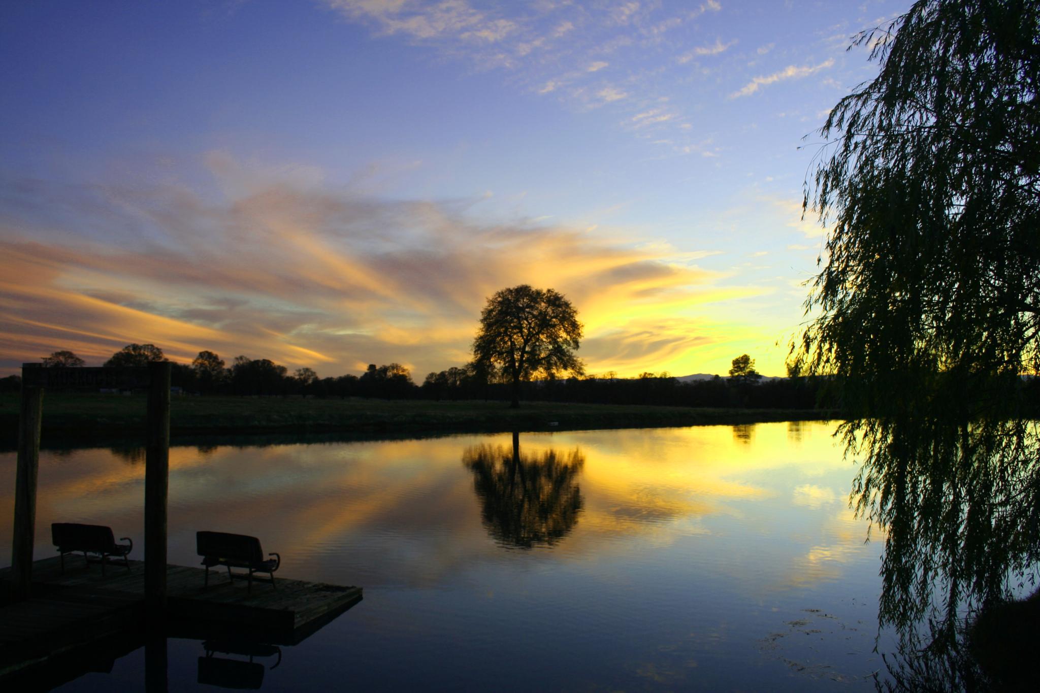Sunset on Kens Pond by rickinredding