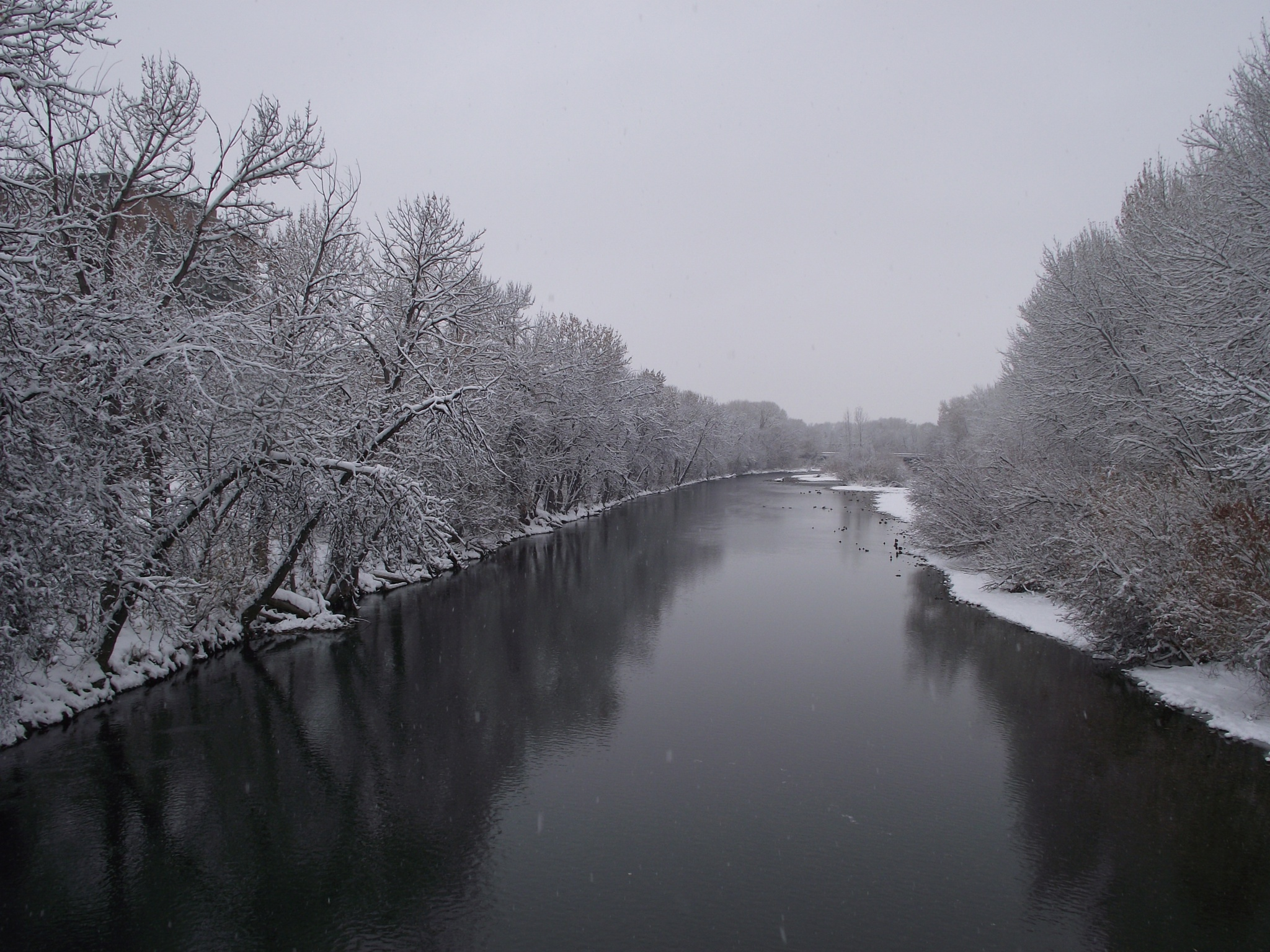 The Boise River by steviedster