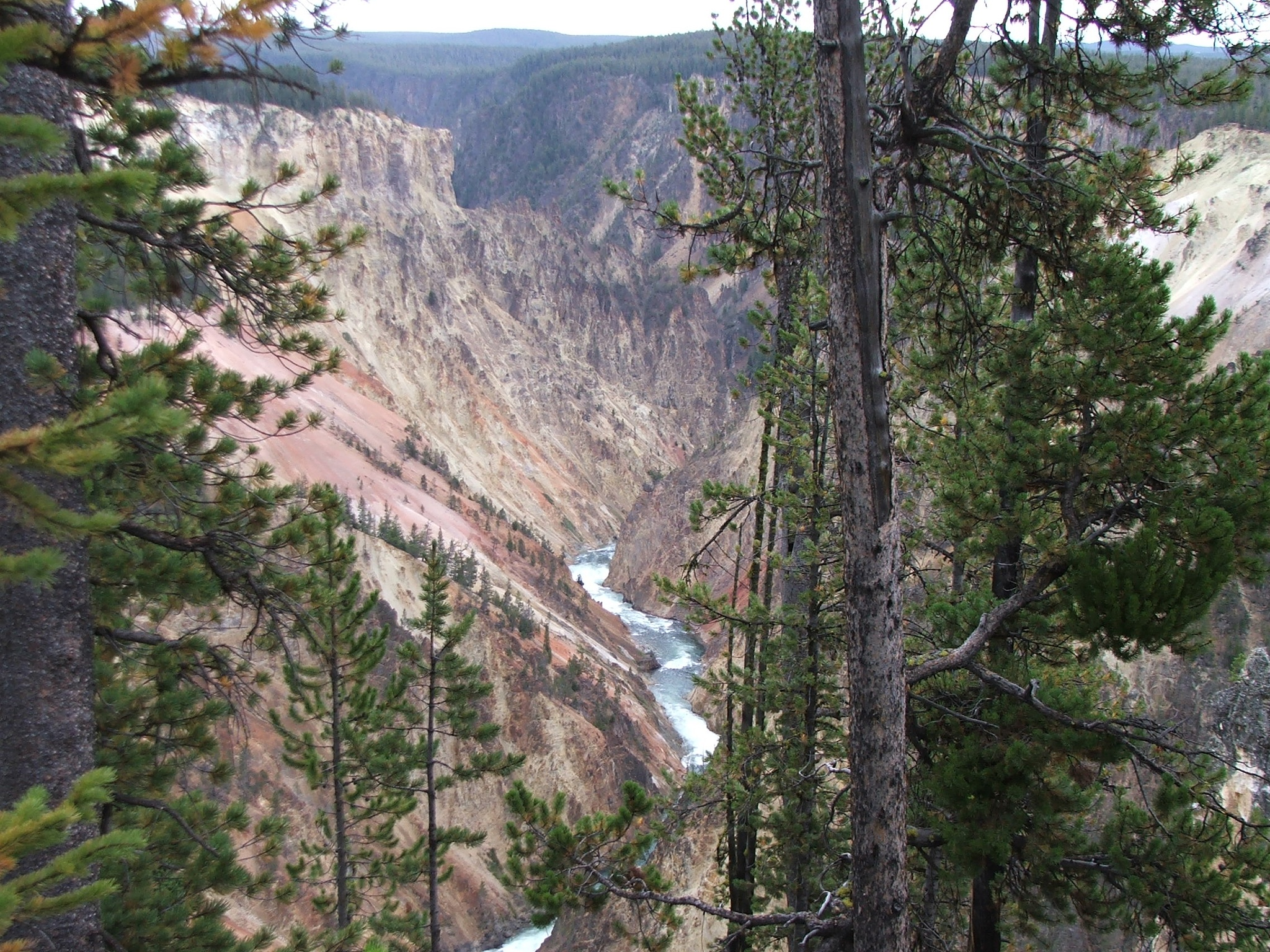 The Grand Canyon of Yellowstone National Park by steviedster