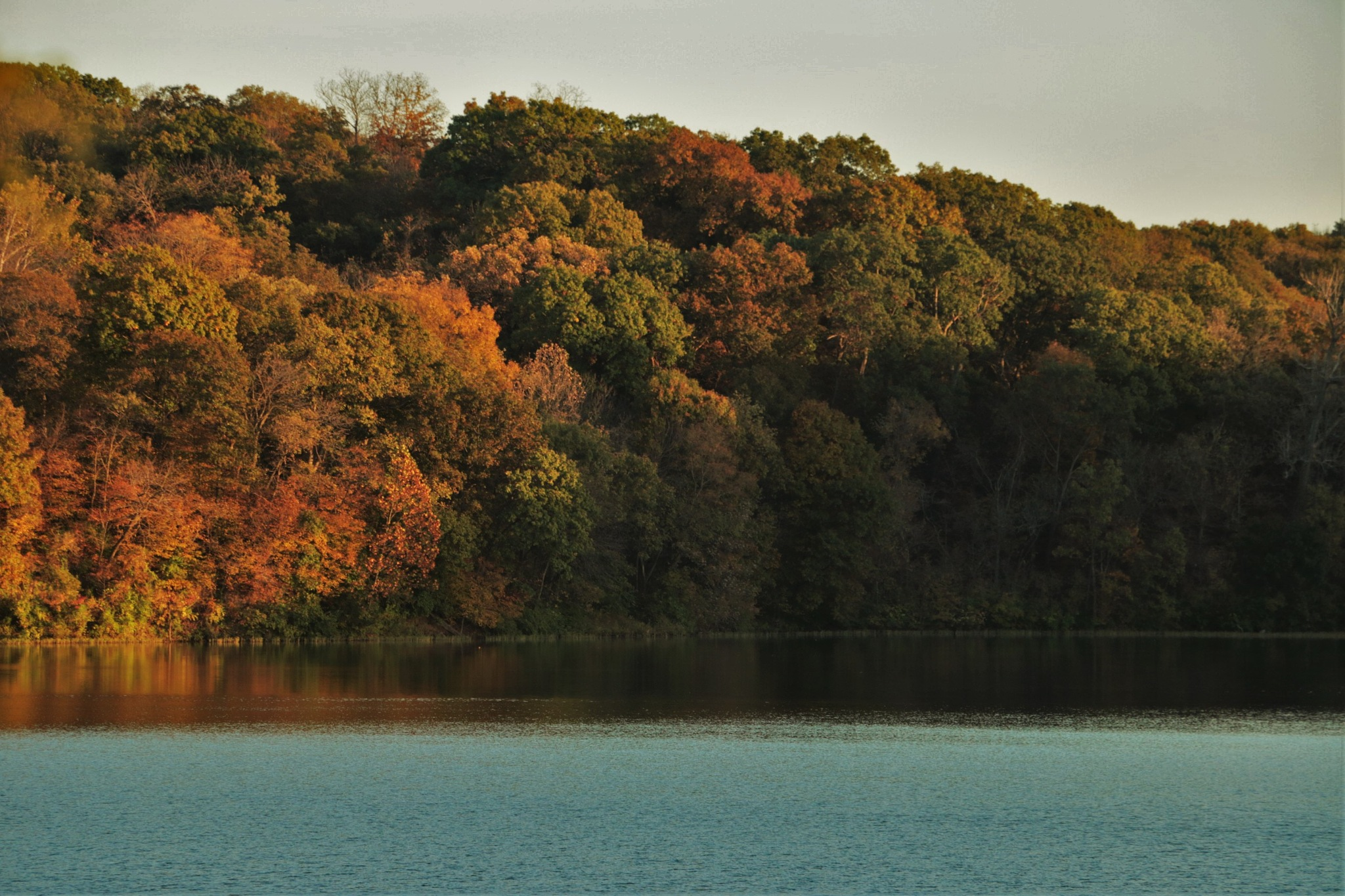 Fall In Kansas by hays69th