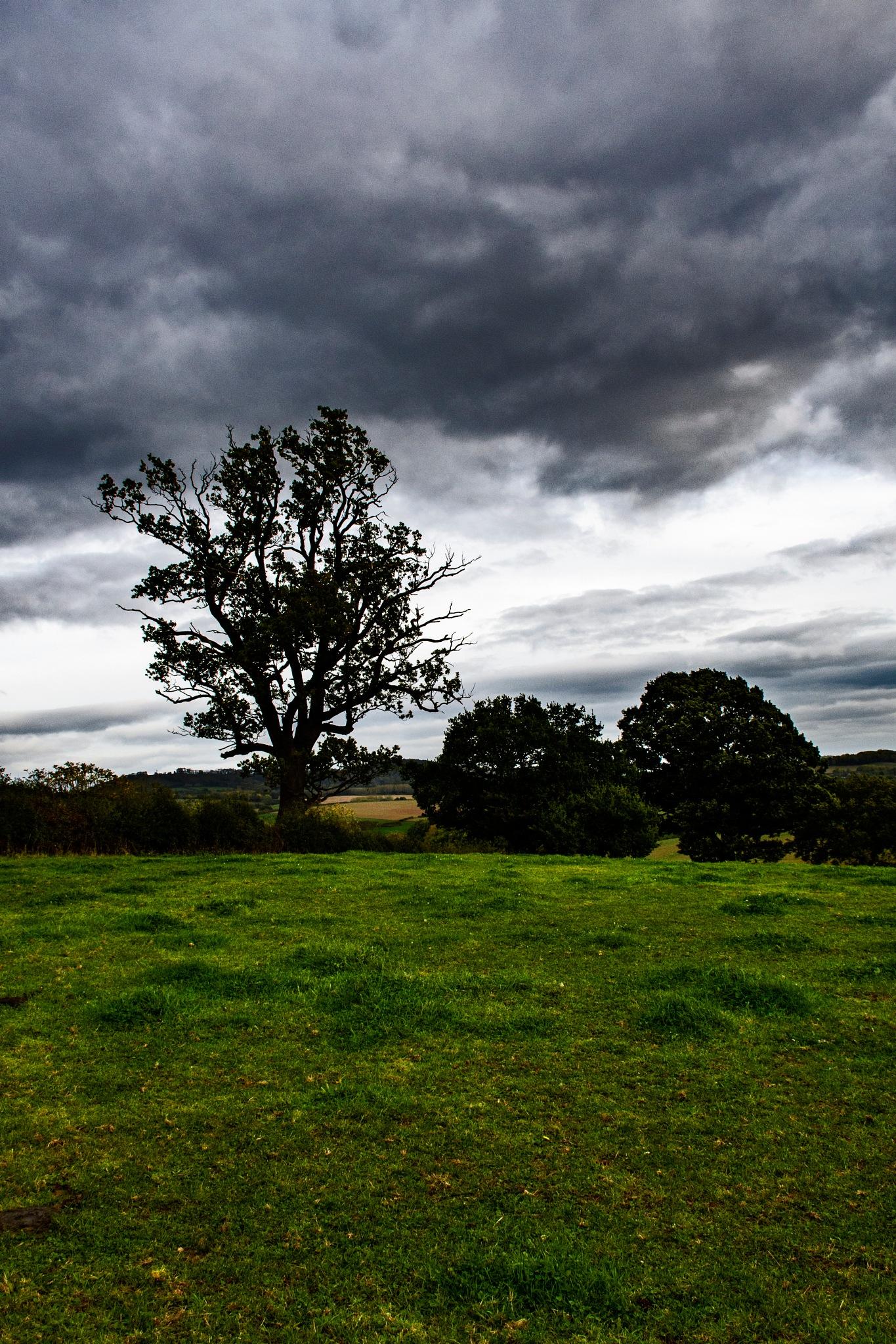 Stormy Silhouette by Tom P