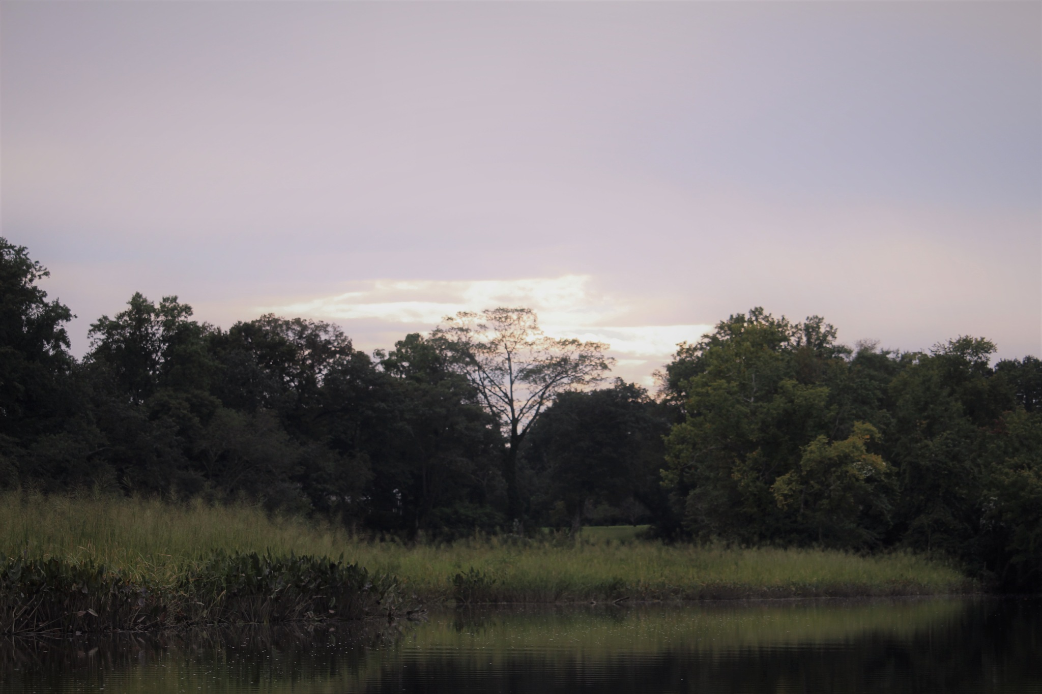 Dusk on the river by VanWyck