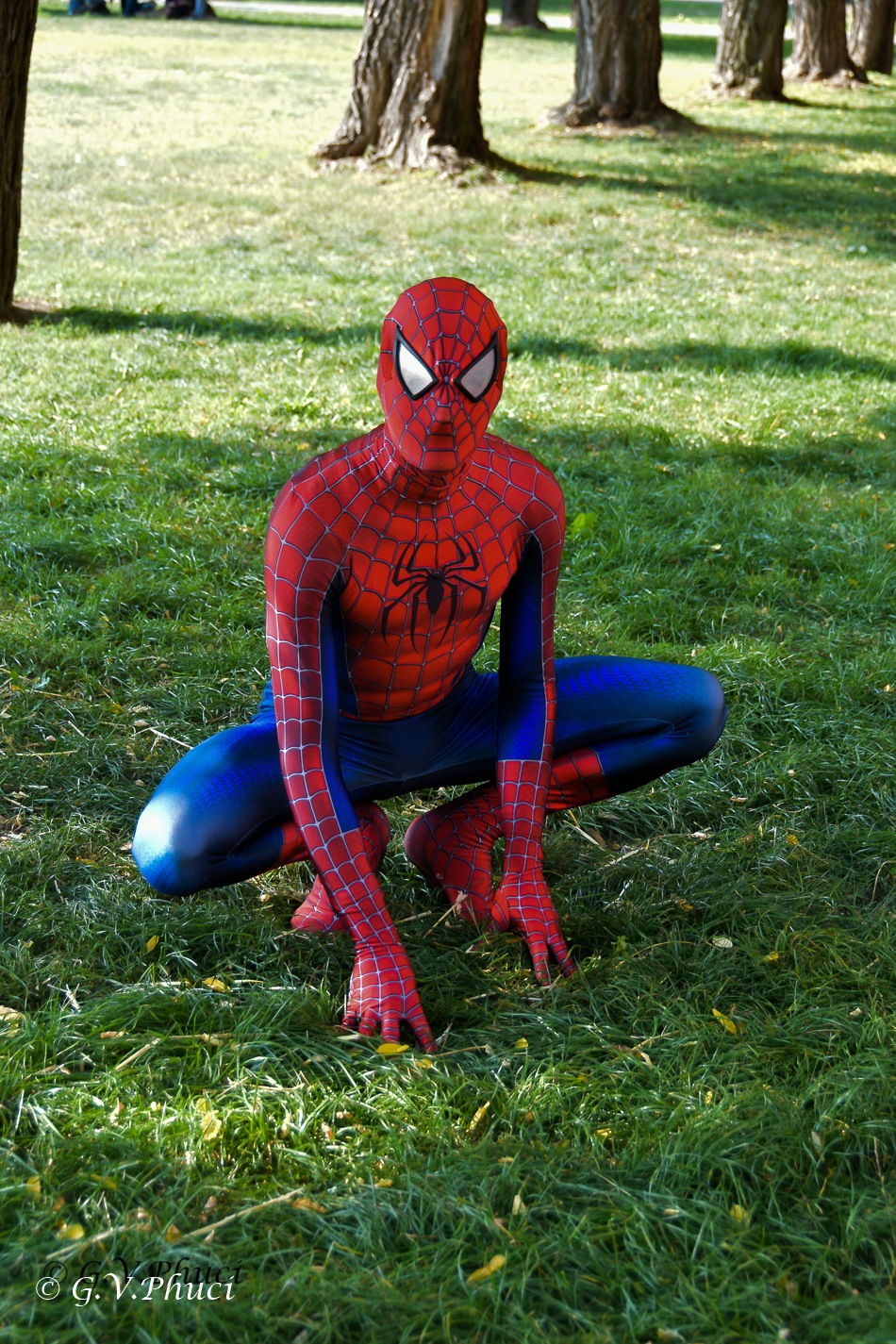 Spiderman by V.G.Phuci