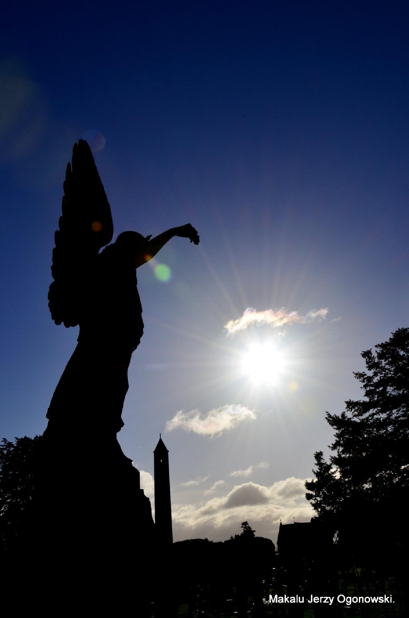 Glasnevin Cemetery.Dublin .Ireland. by Makalu Jerzy Ogonowski