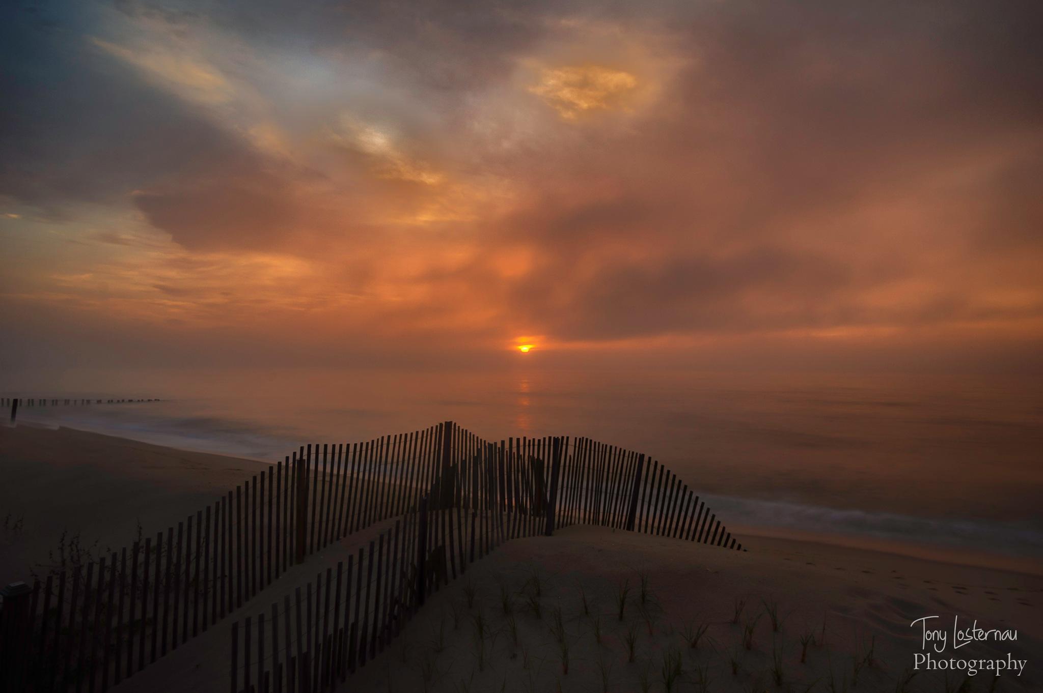 Among the mist by kyzerzoze