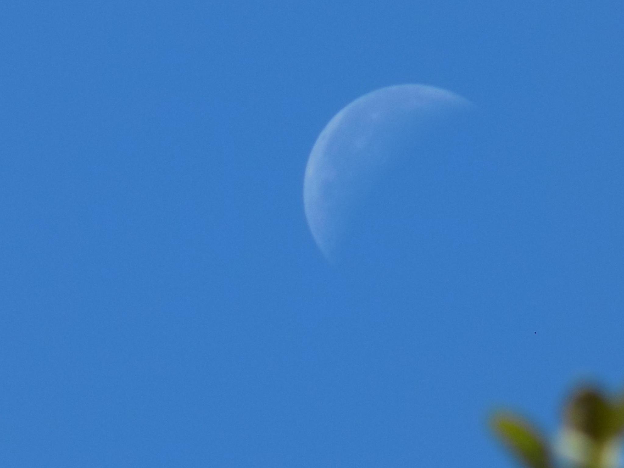 Moon by uzkuraitiene62