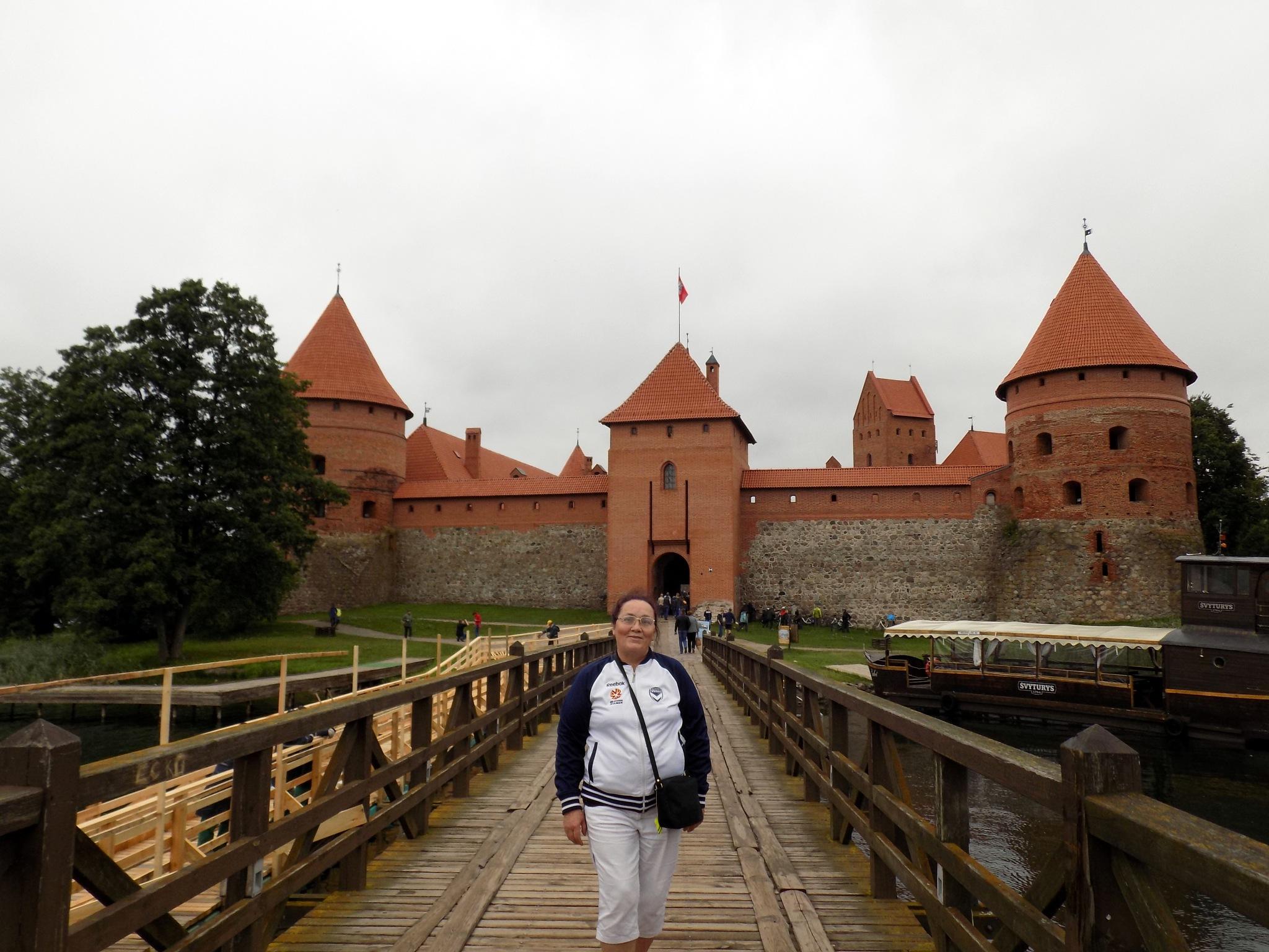 The old castle. by uzkuraitiene62