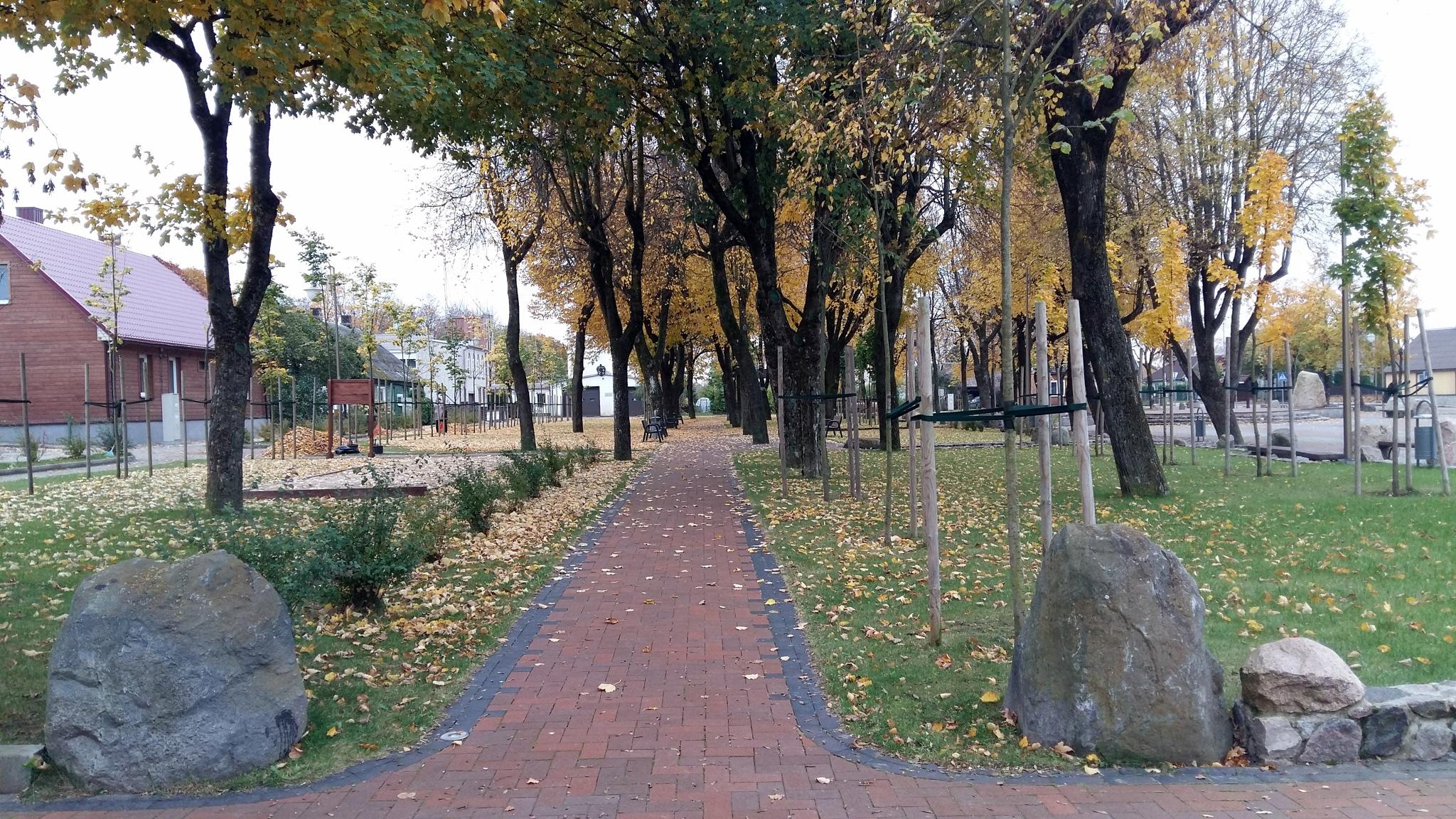 Park in autumn by uzkuraitiene62