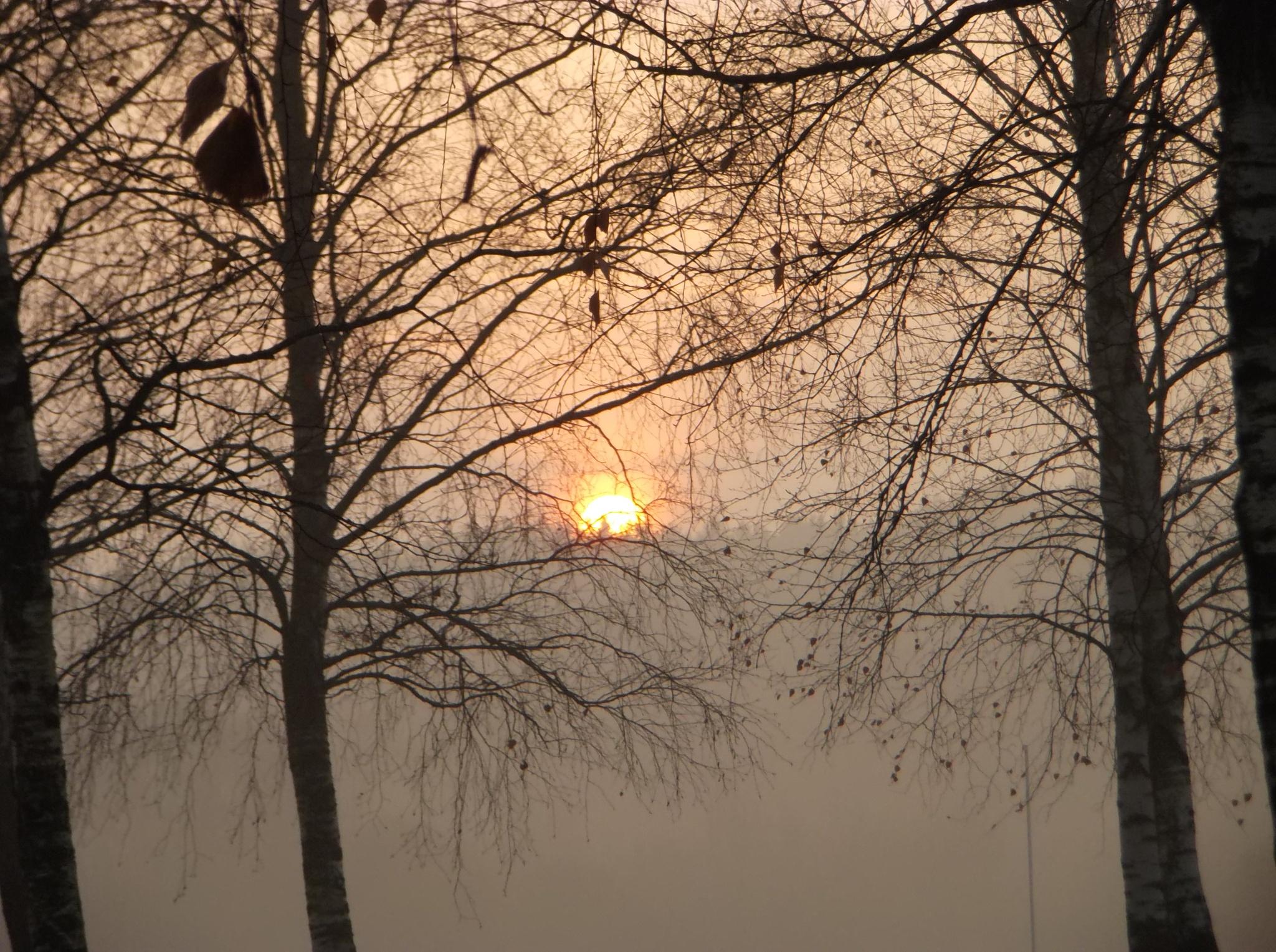 Sunrise by uzkuraitiene62