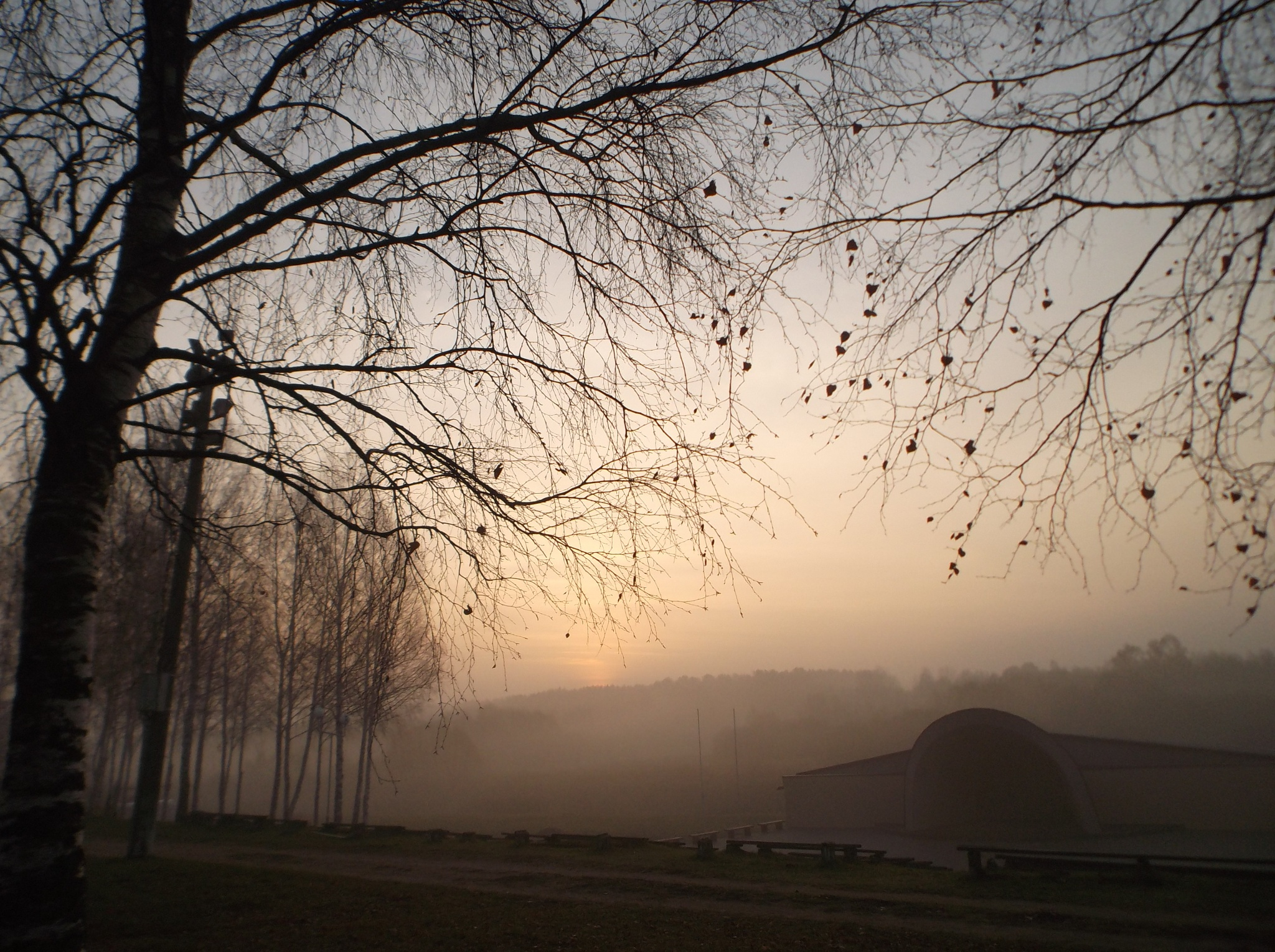 Morning before sunrise by uzkuraitiene62