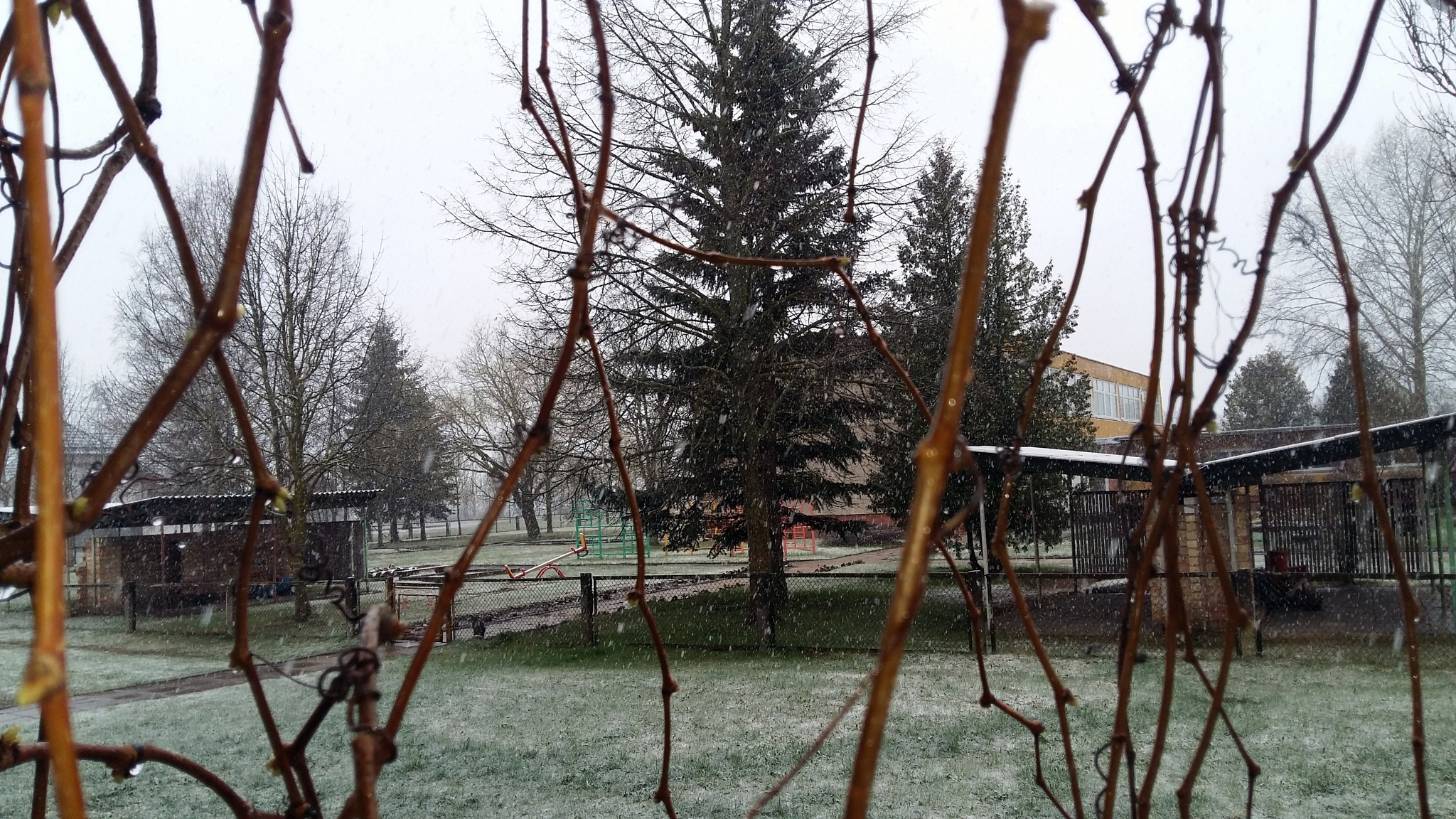 Early spring by uzkuraitiene62