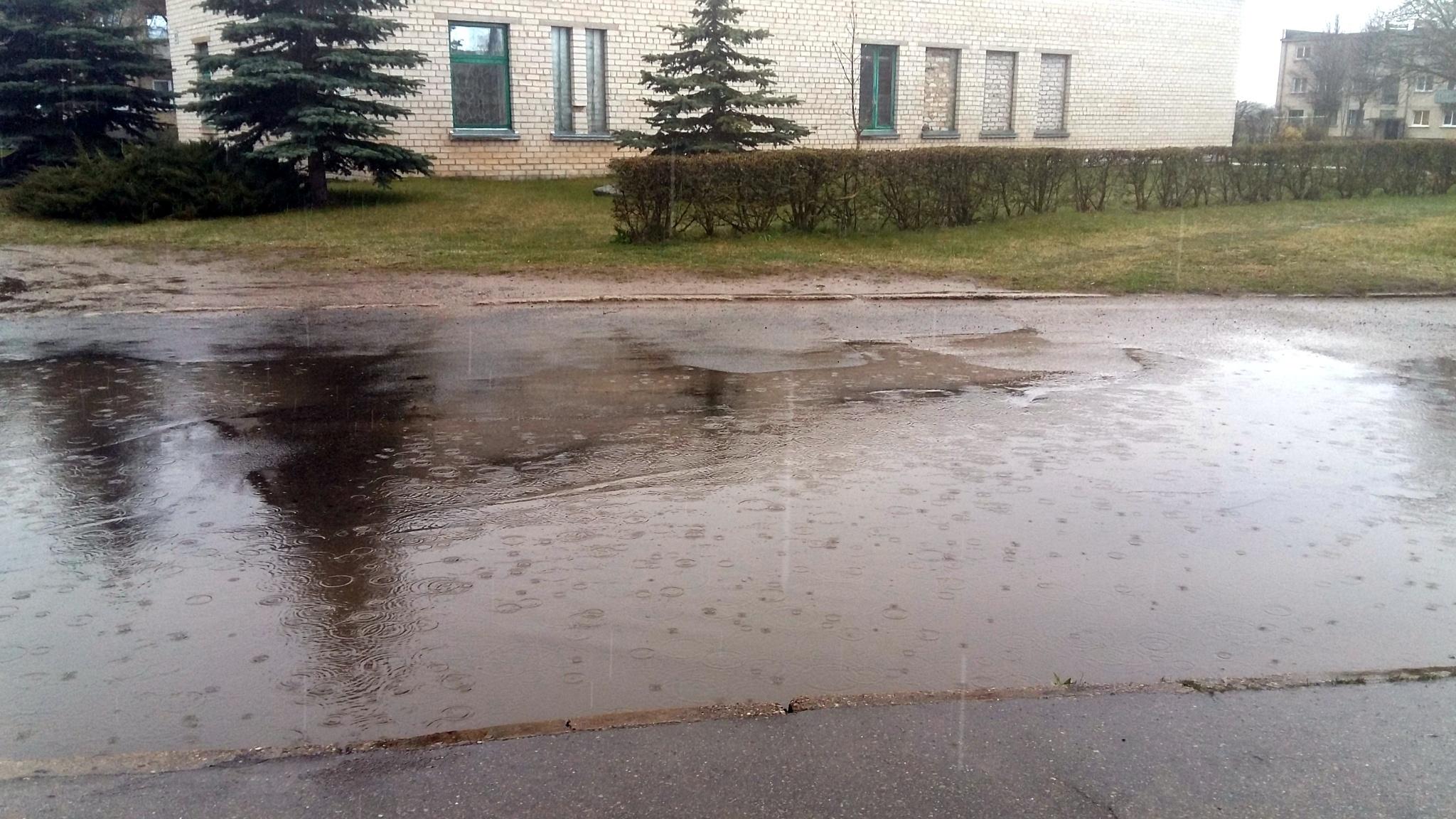 Raining. by uzkuraitiene62