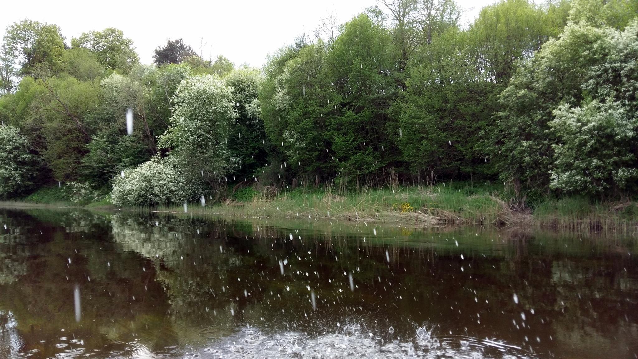 Spring riverside by uzkuraitiene62