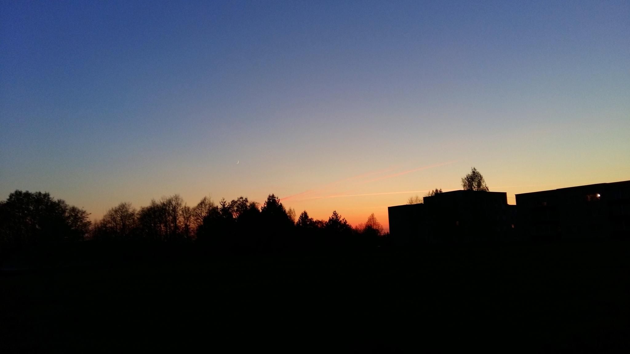 Evening . by uzkuraitiene62