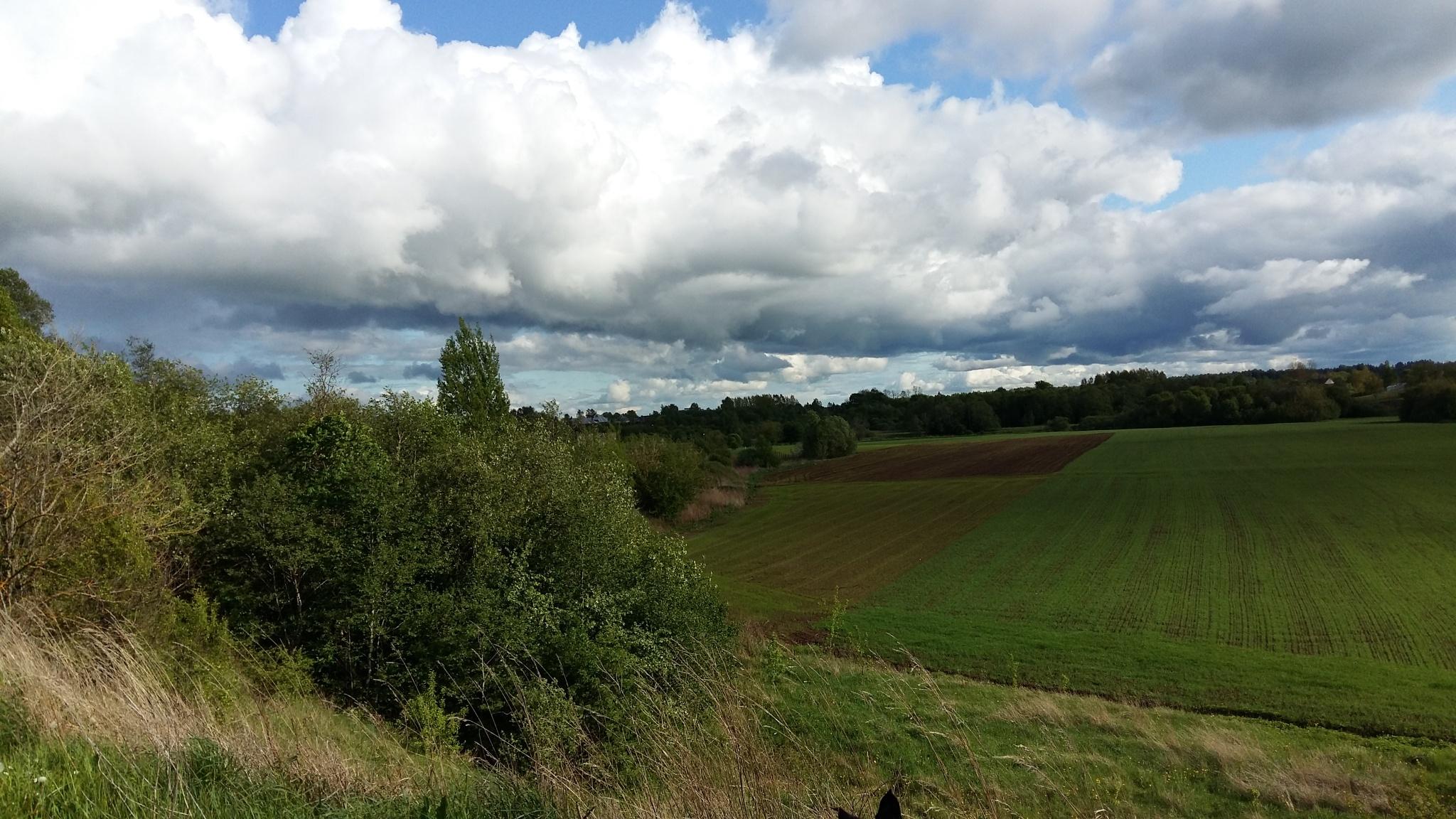 Landscape. by uzkuraitiene62