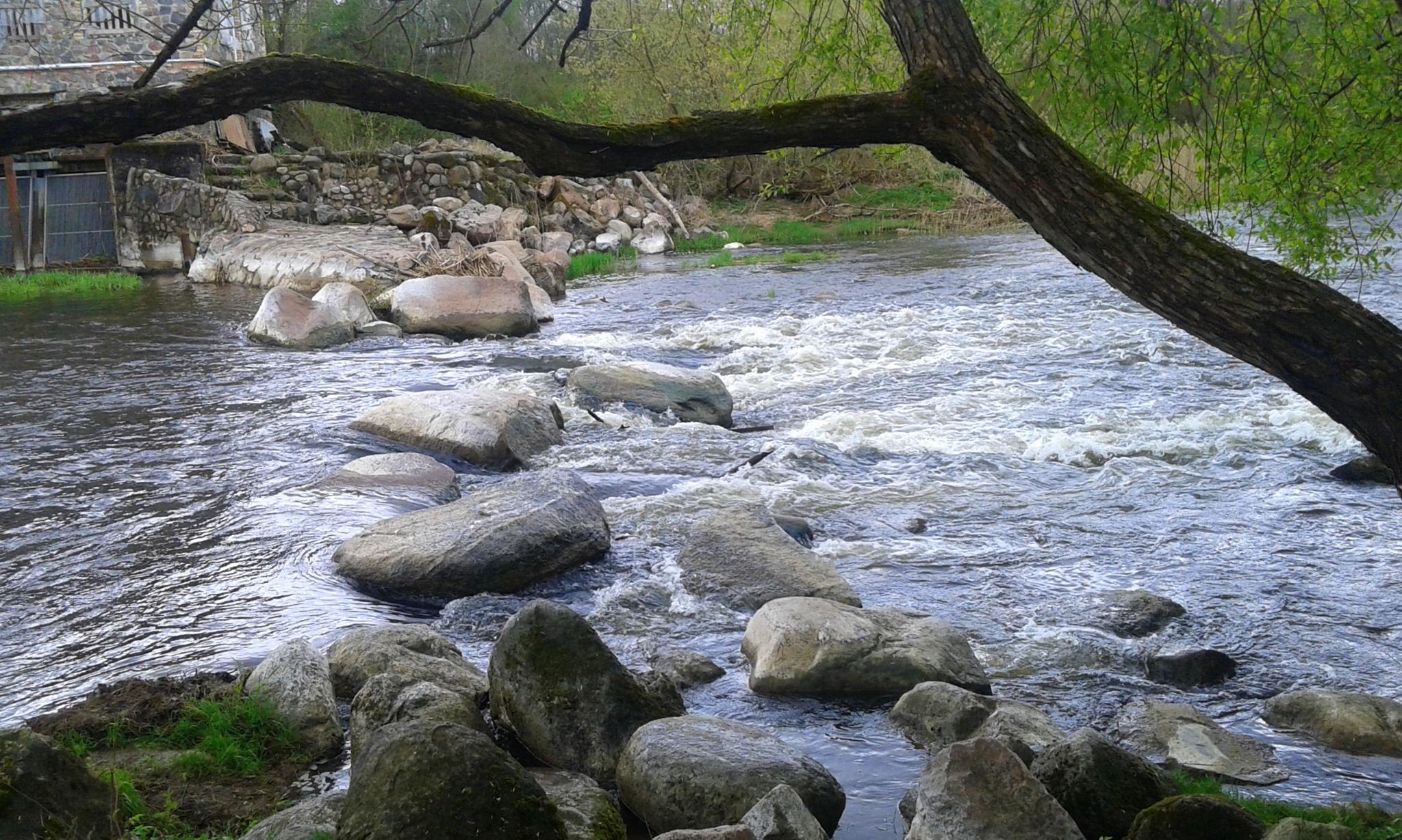 Photo in Nature #nature #landscape #stones #river