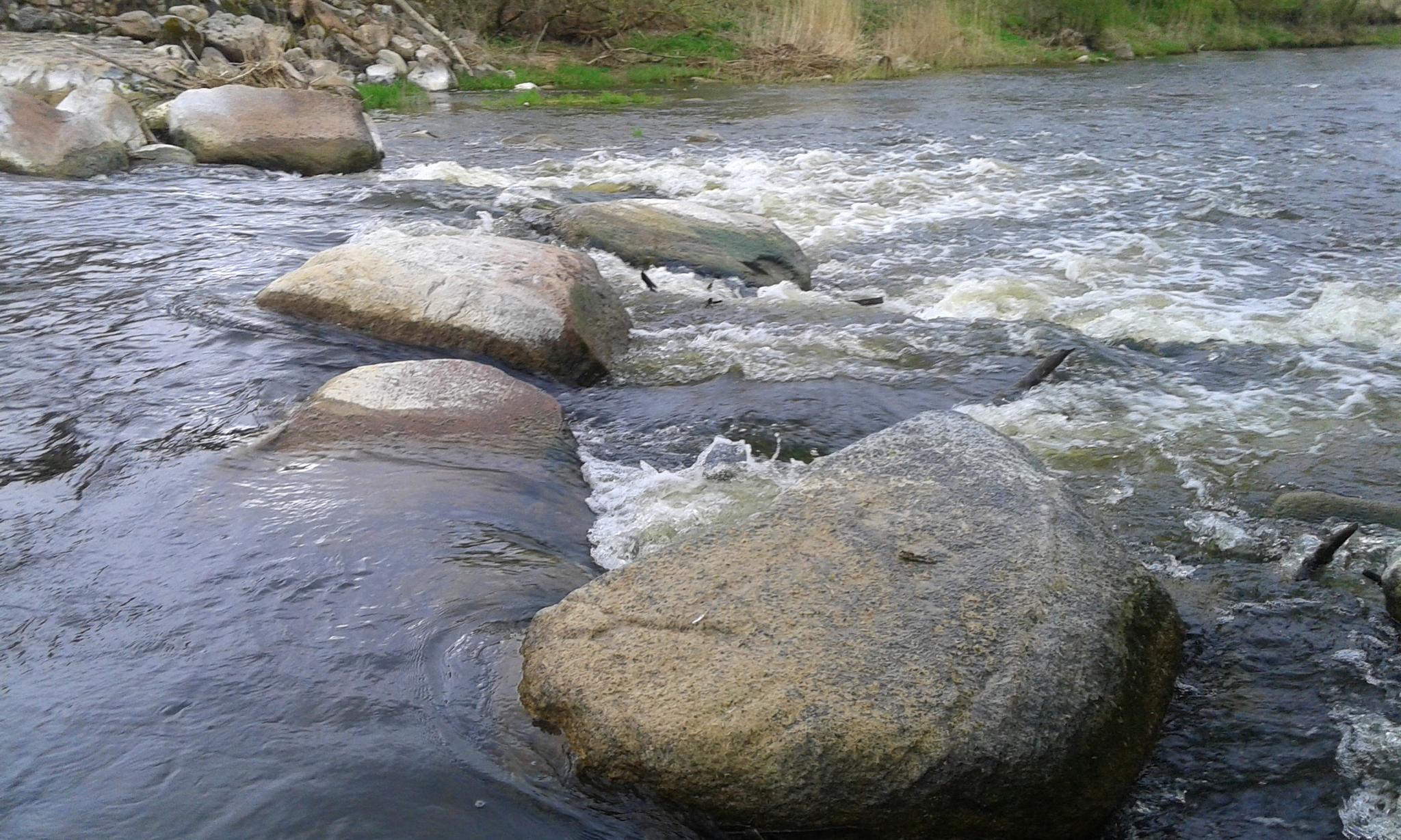 Photo in Nature #stones #nature #river #landscape