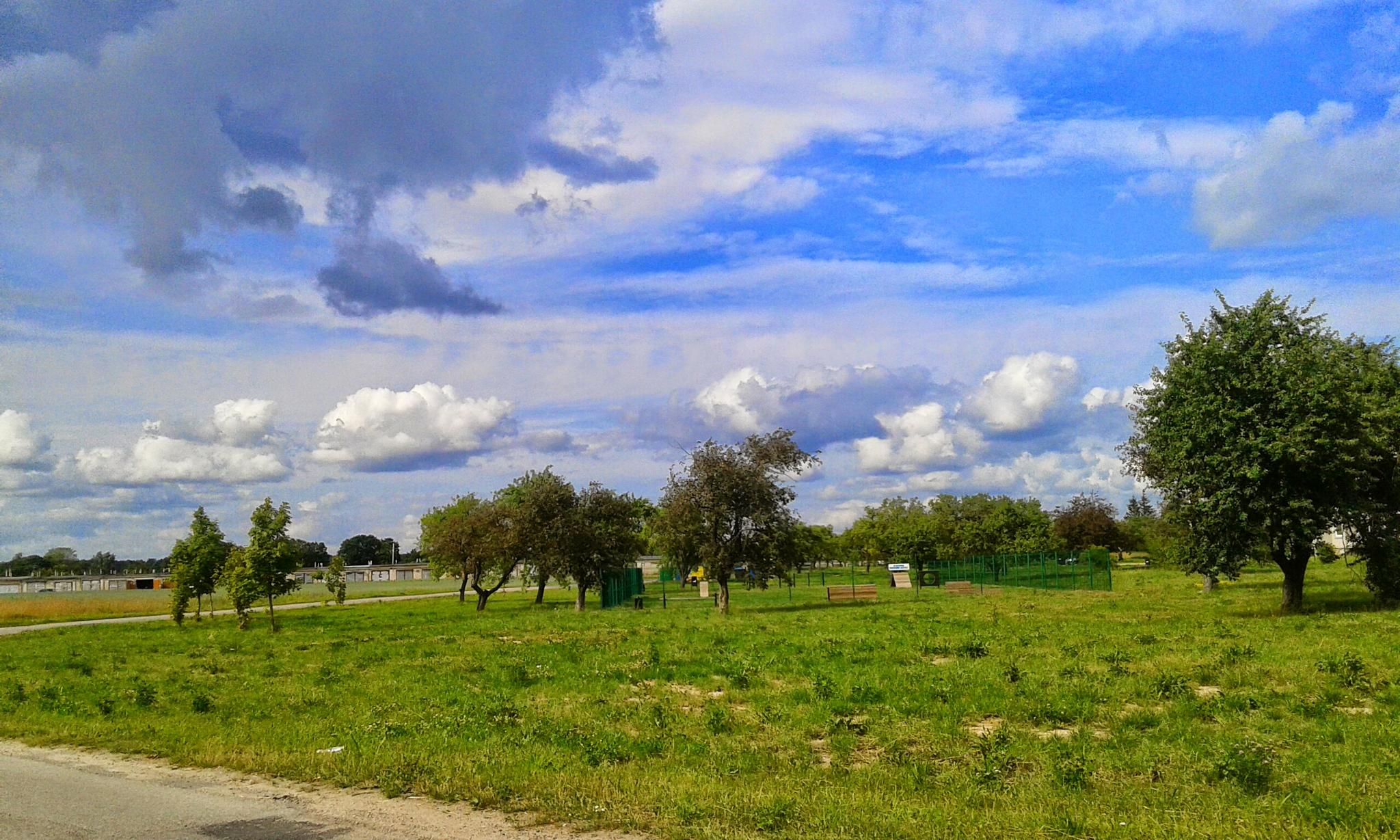 Beautiful sky by uzkuraitiene62