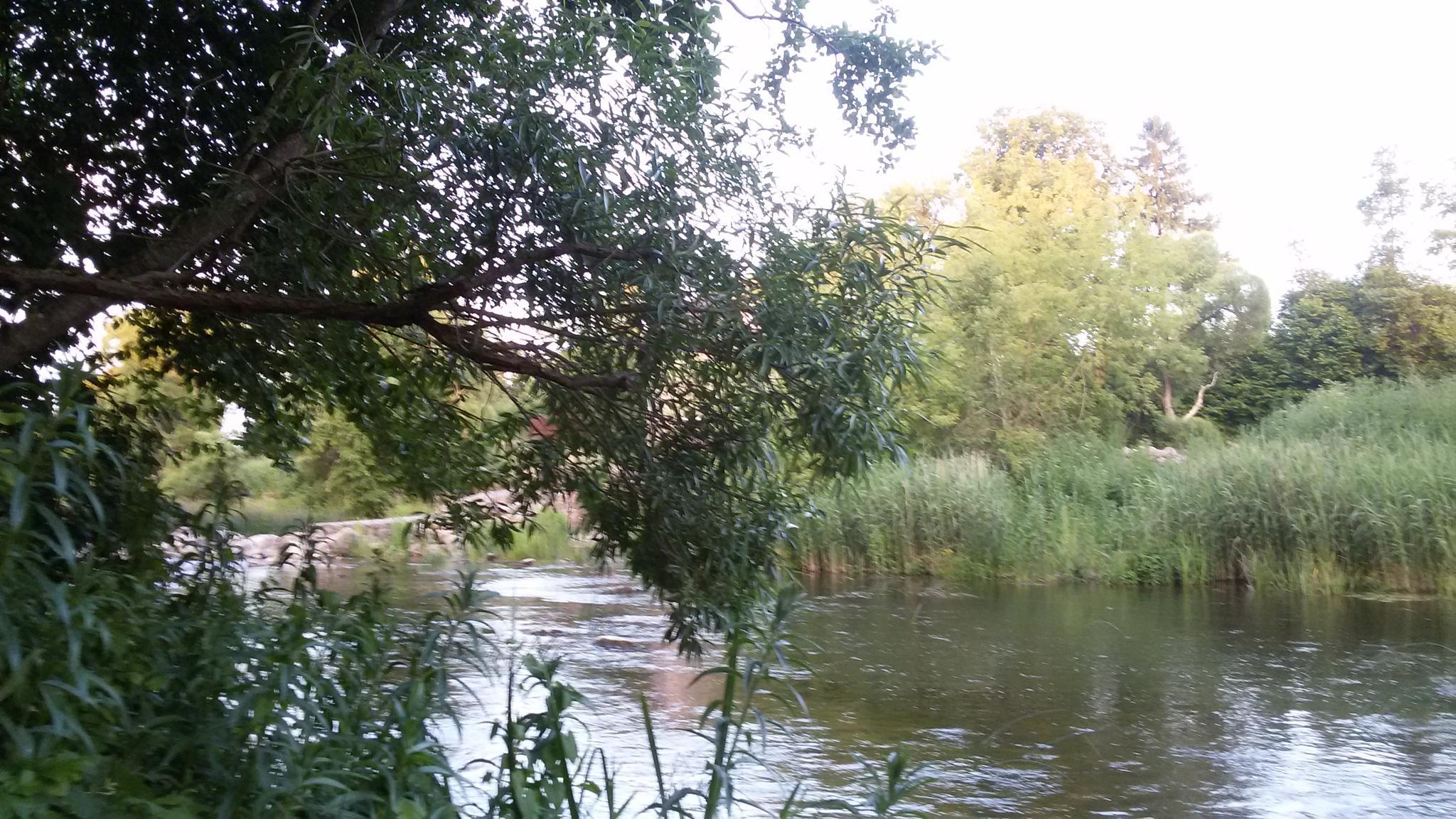 At river by uzkuraitiene62