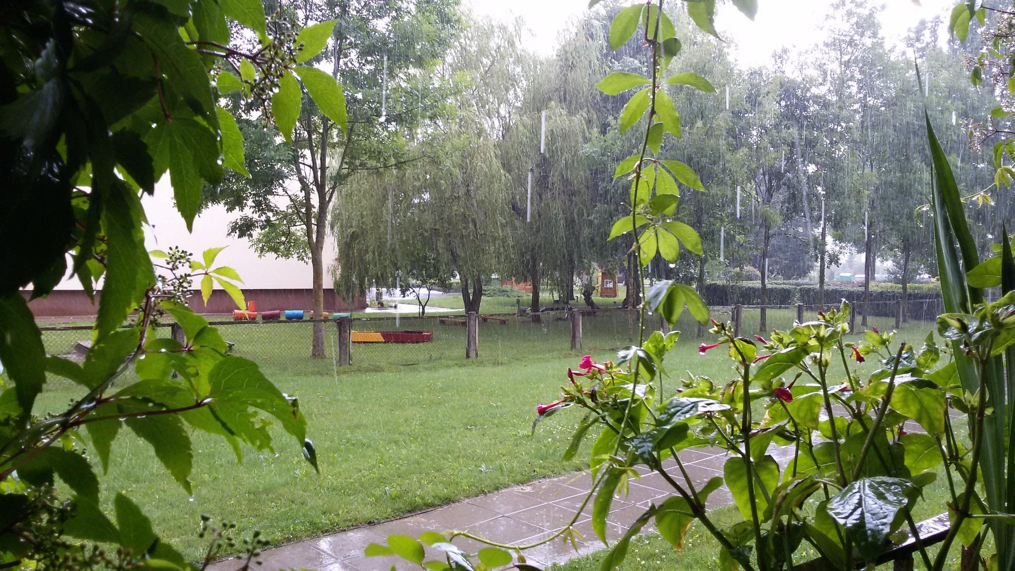 Raining rain by uzkuraitiene62