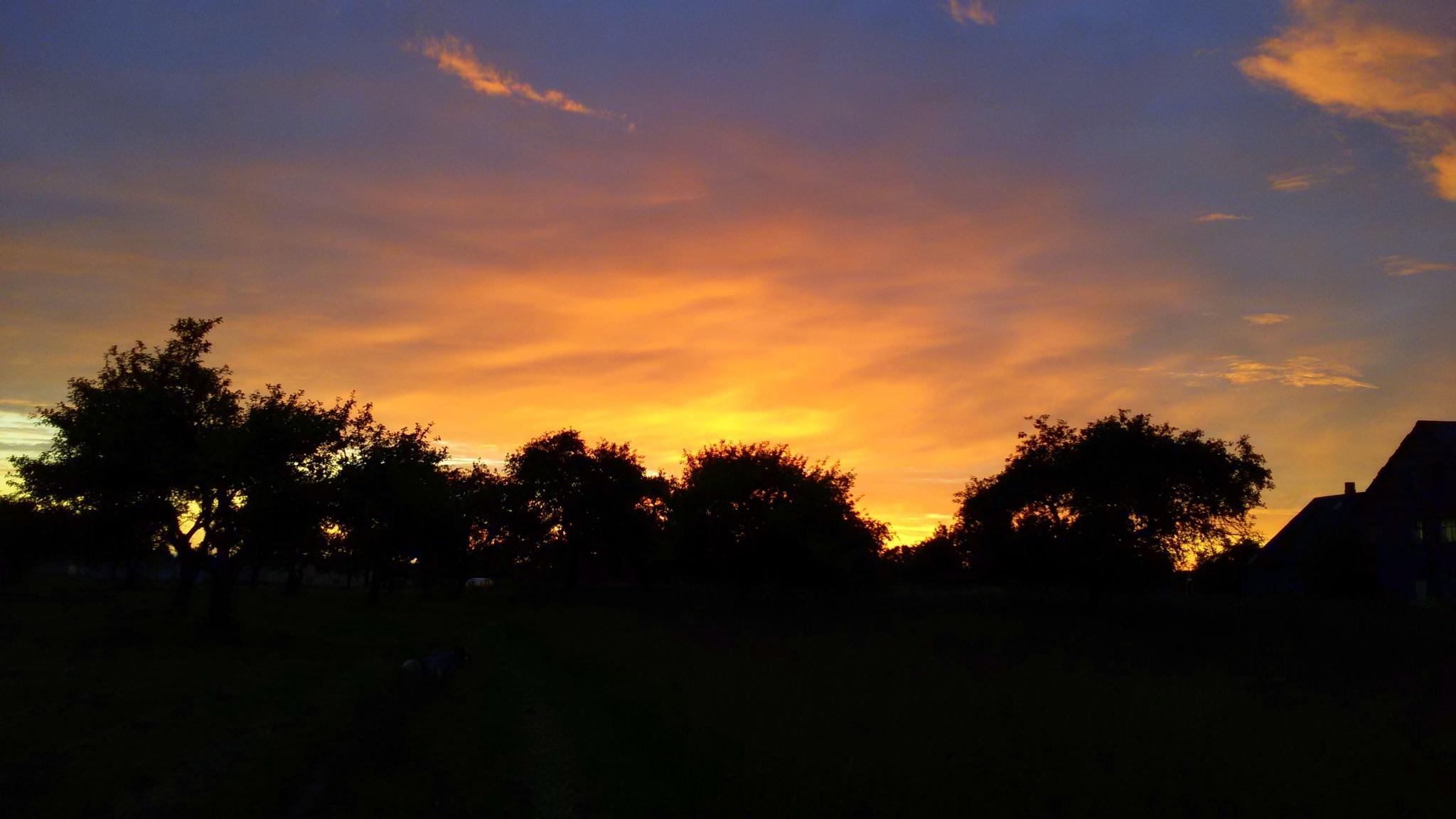 Evening sky by uzkuraitiene62