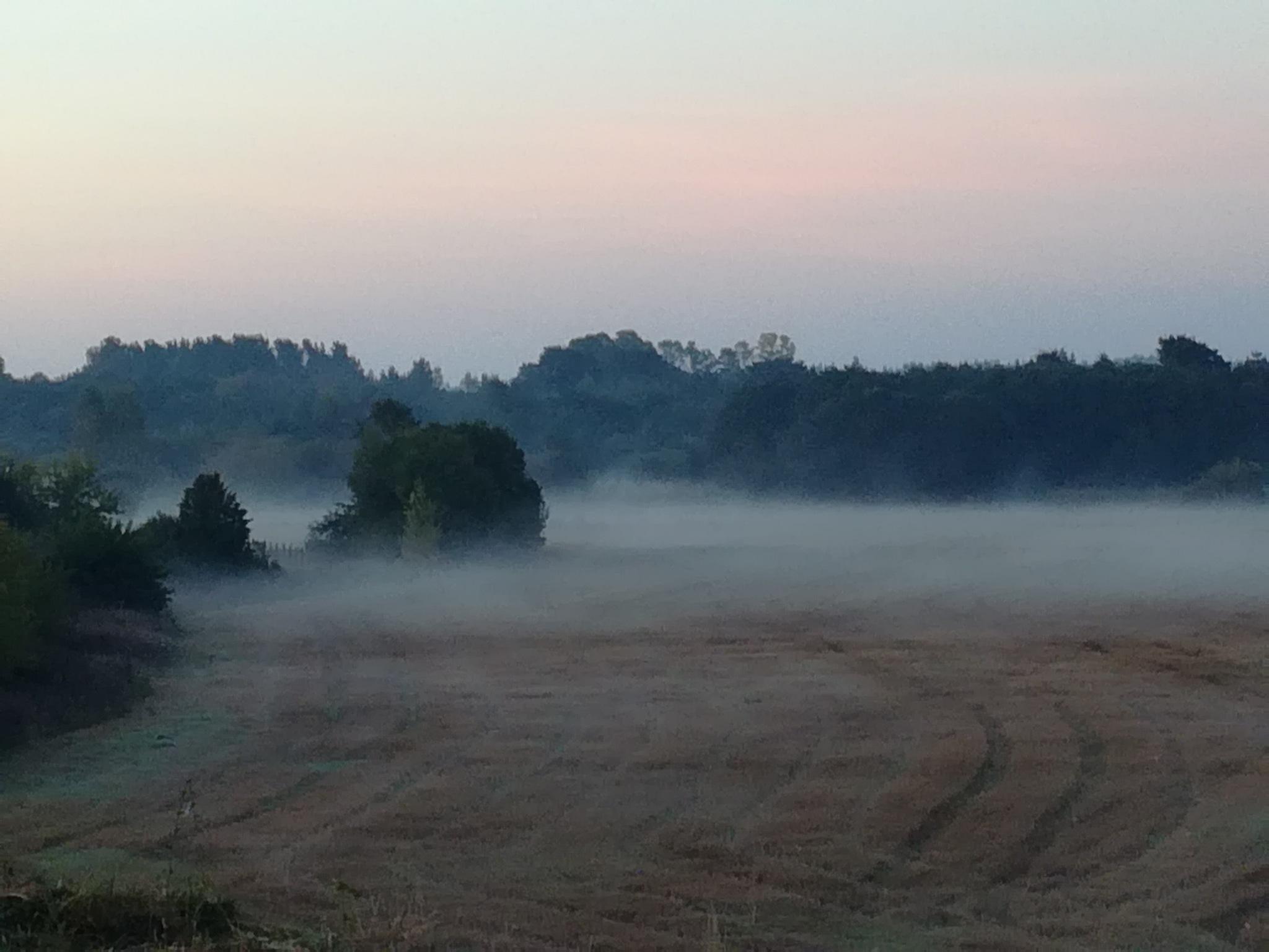 Landscape in the autumn by uzkuraitiene62