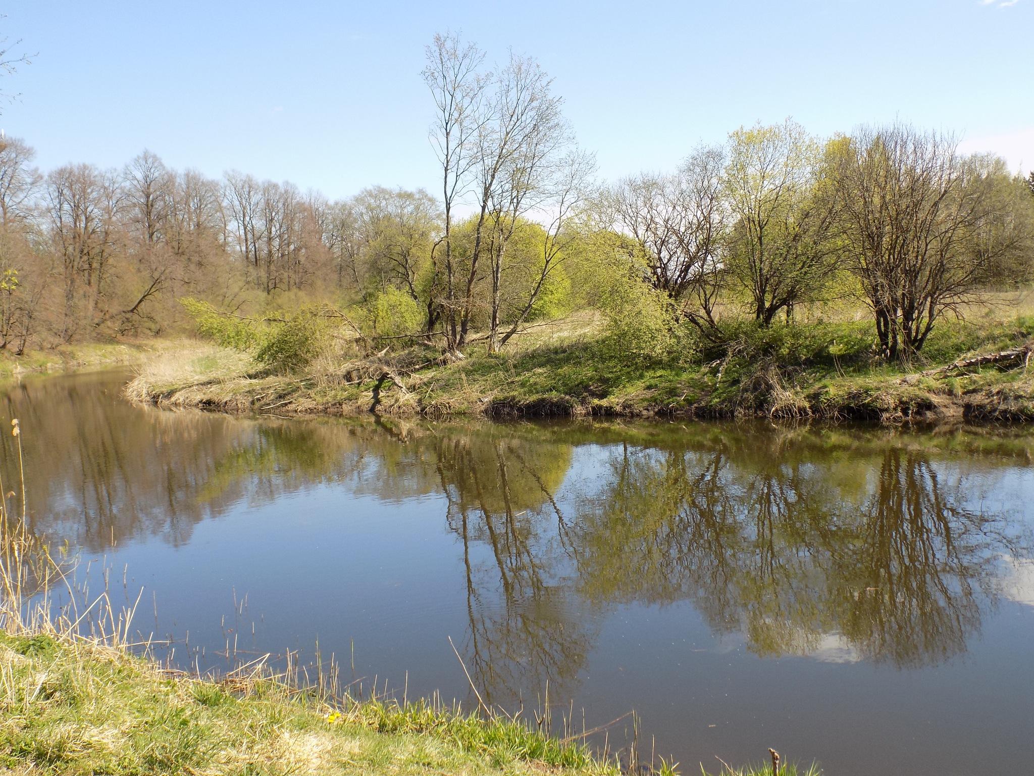 In spring by uzkuraitiene62