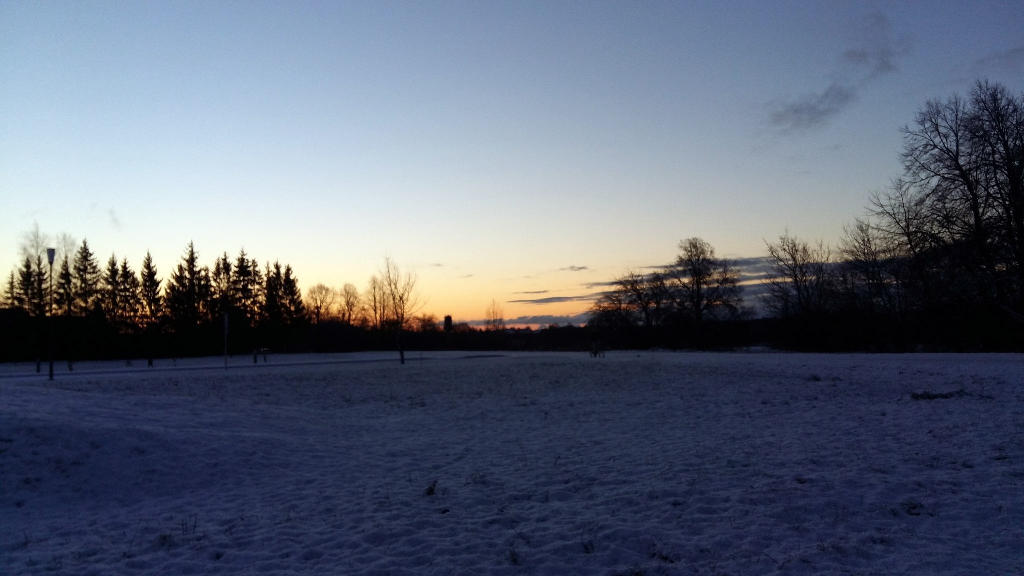 Winter morning by uzkuraitiene62