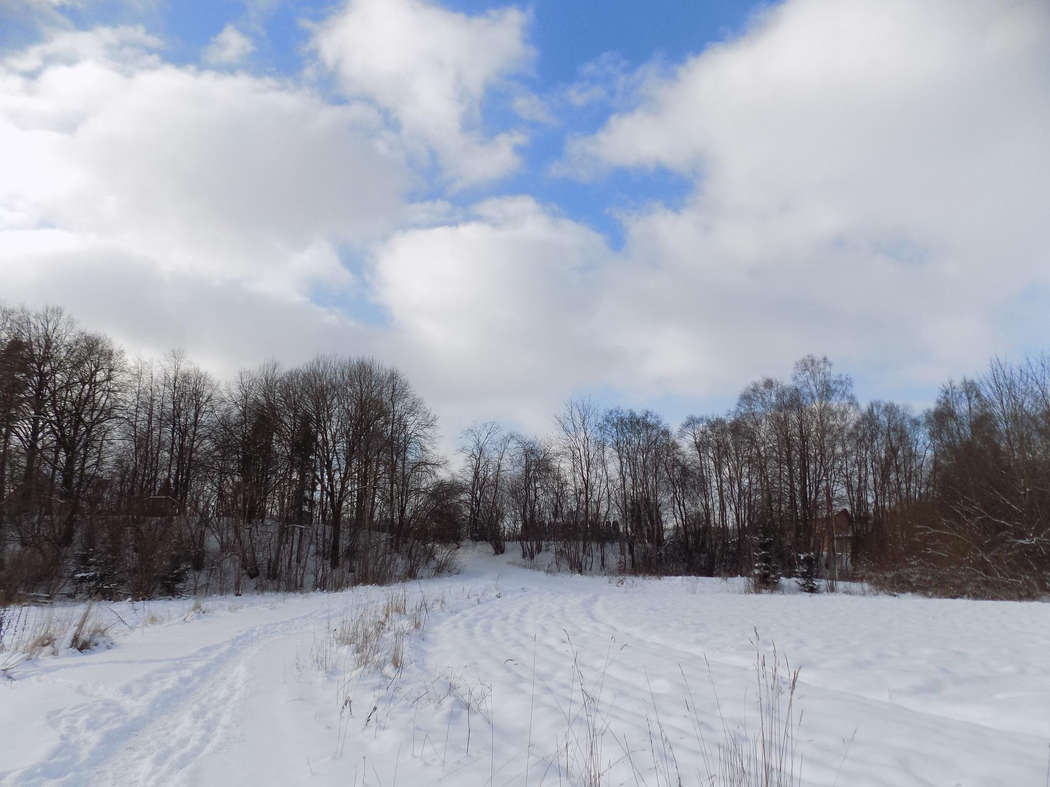 Landscape in winter by uzkuraitiene62