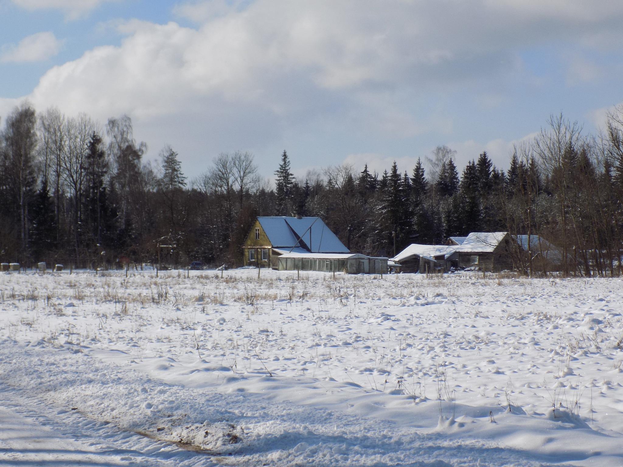 Landscape in the winter by uzkuraitiene62