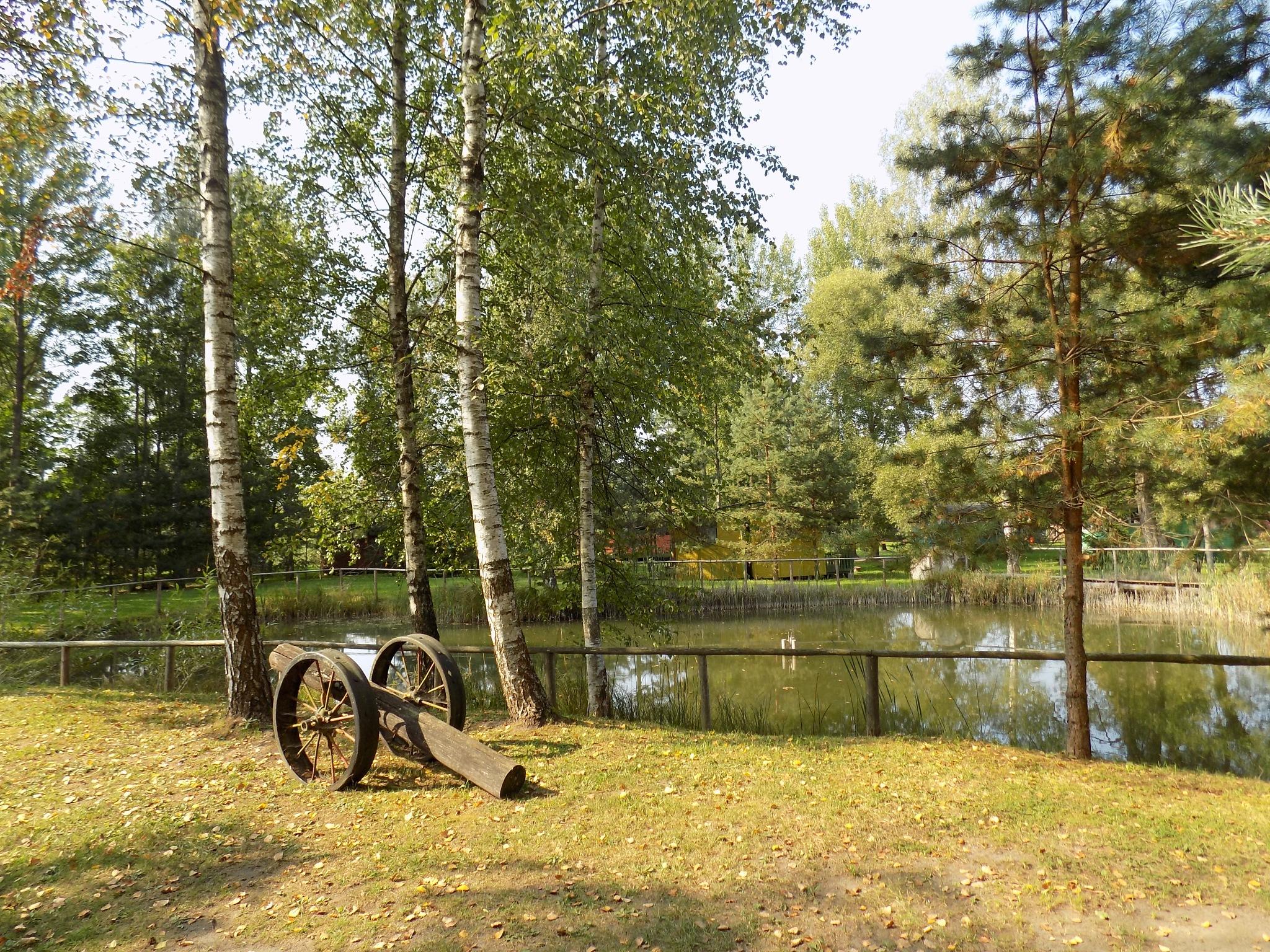 Near the pond by uzkuraitiene62