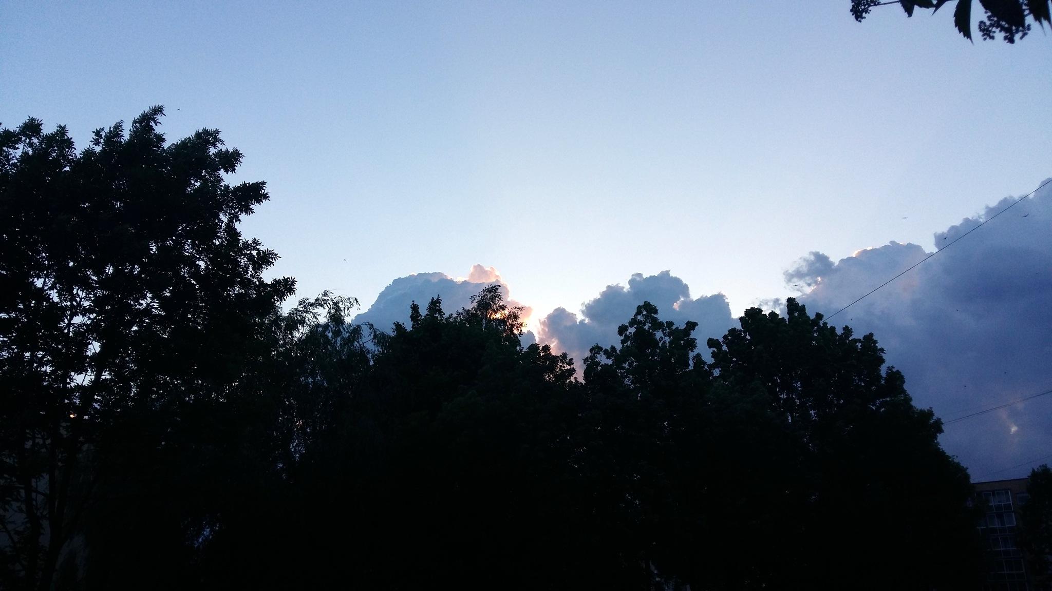 Evening sky. by uzkuraitiene62
