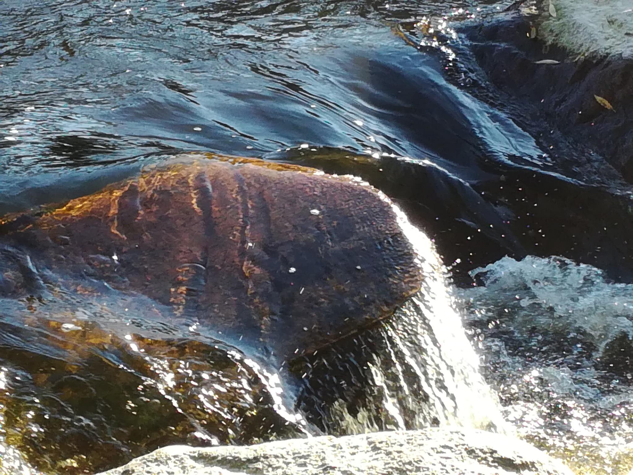 Stones in the river by uzkuraitiene62