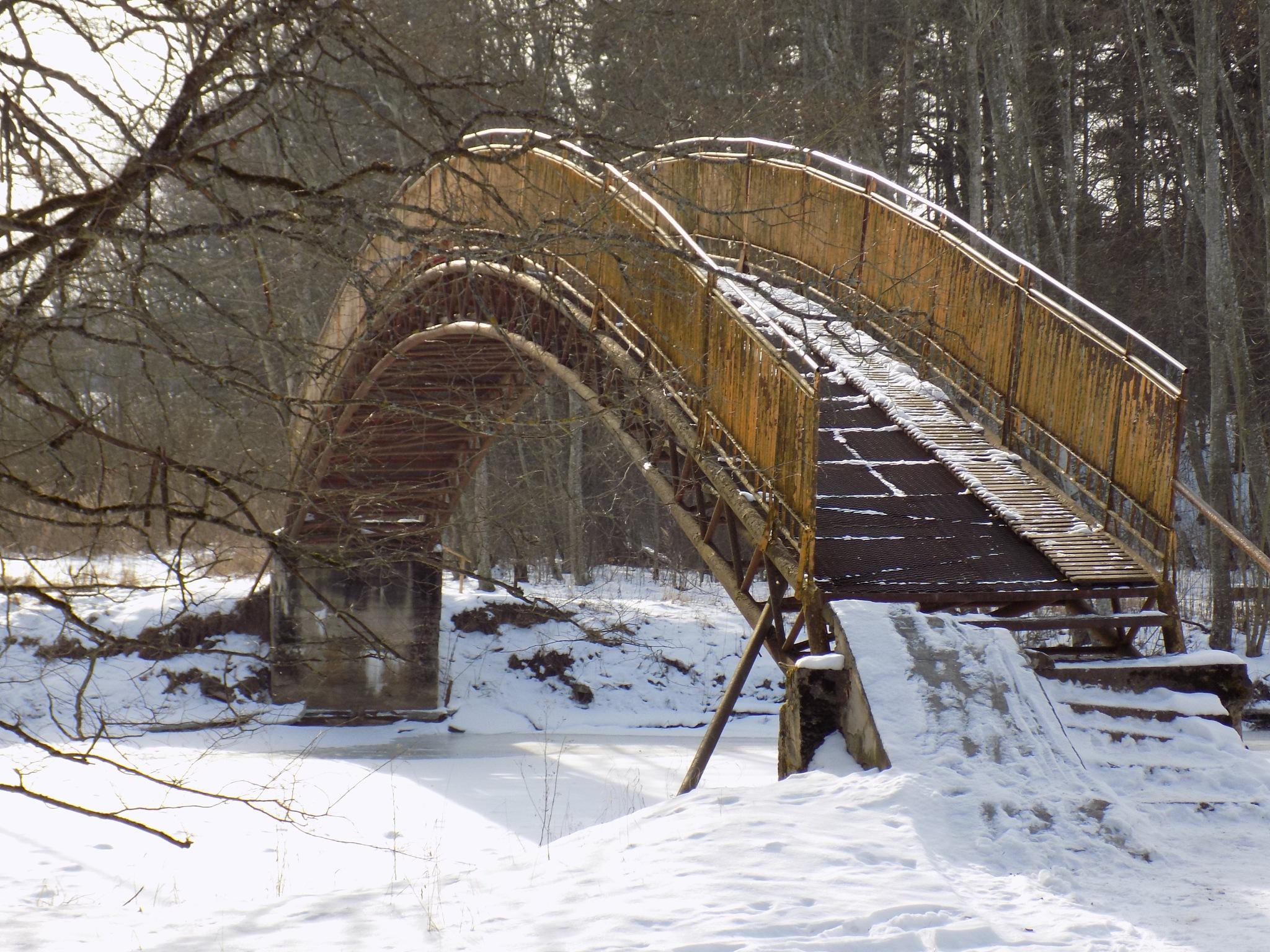 Bridge by uzkuraitiene62