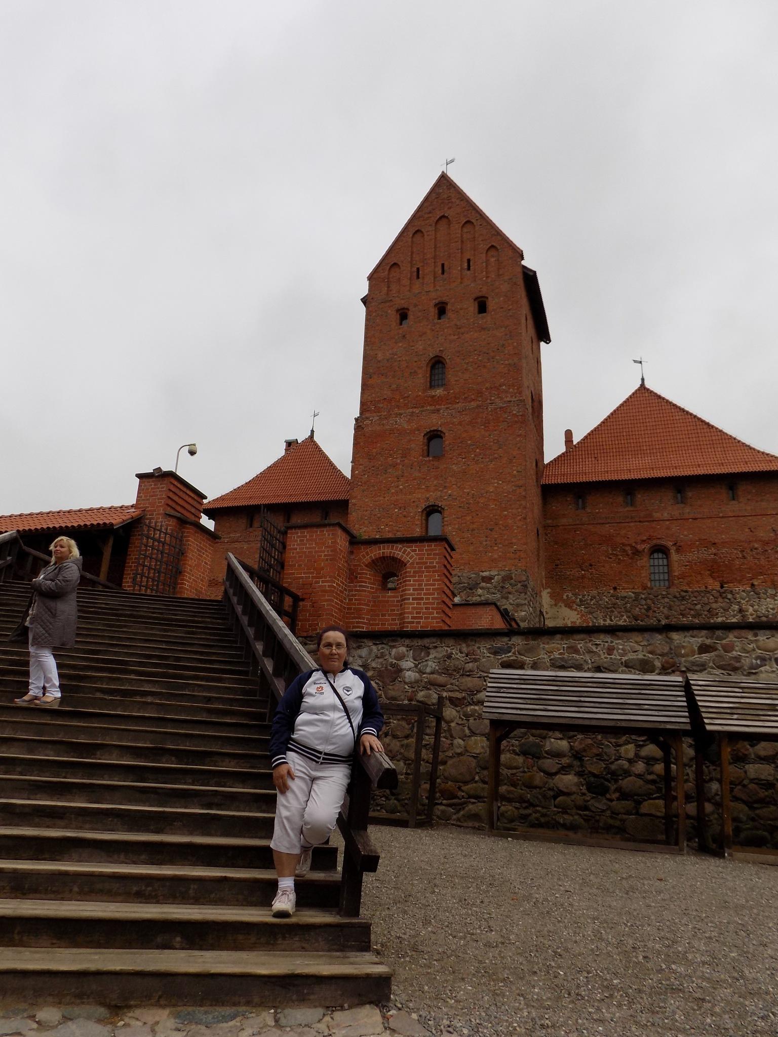 The castle. by uzkuraitiene62