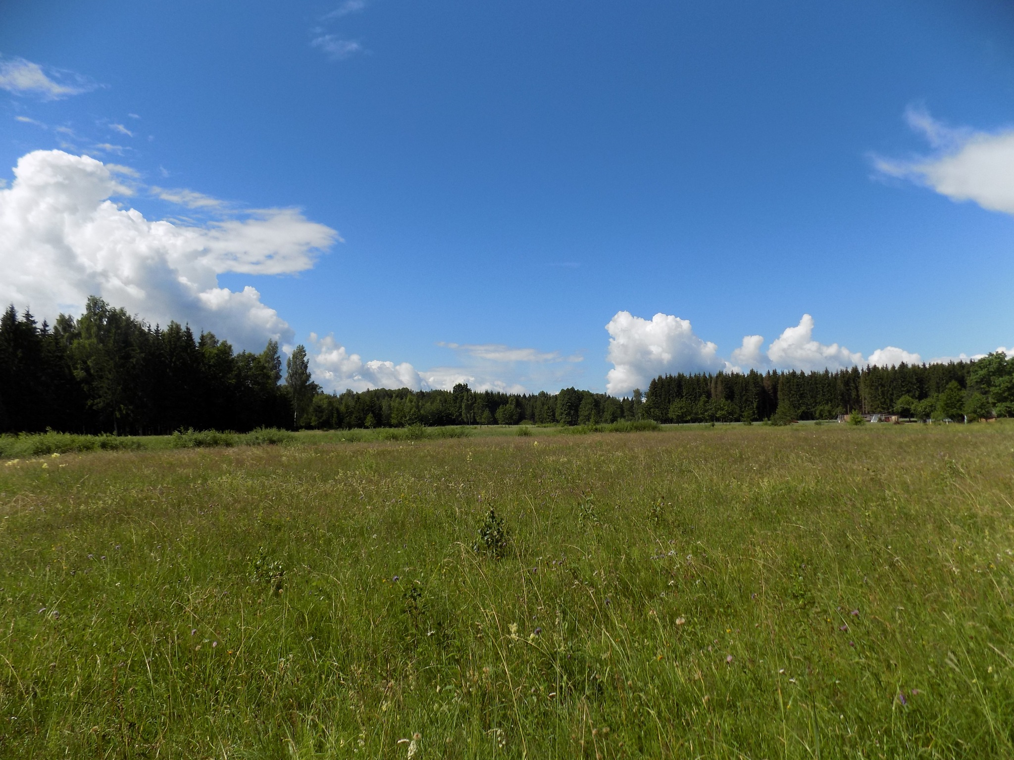 Landscape by uzkuraitiene62