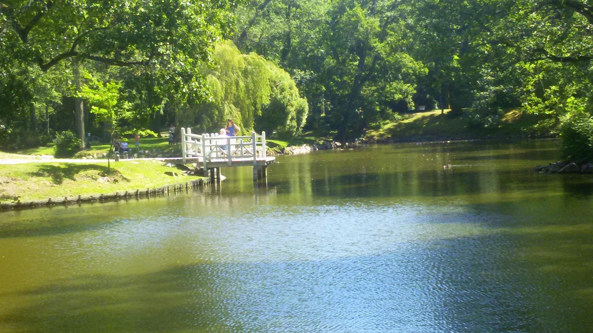 Pond in the park by uzkuraitiene62
