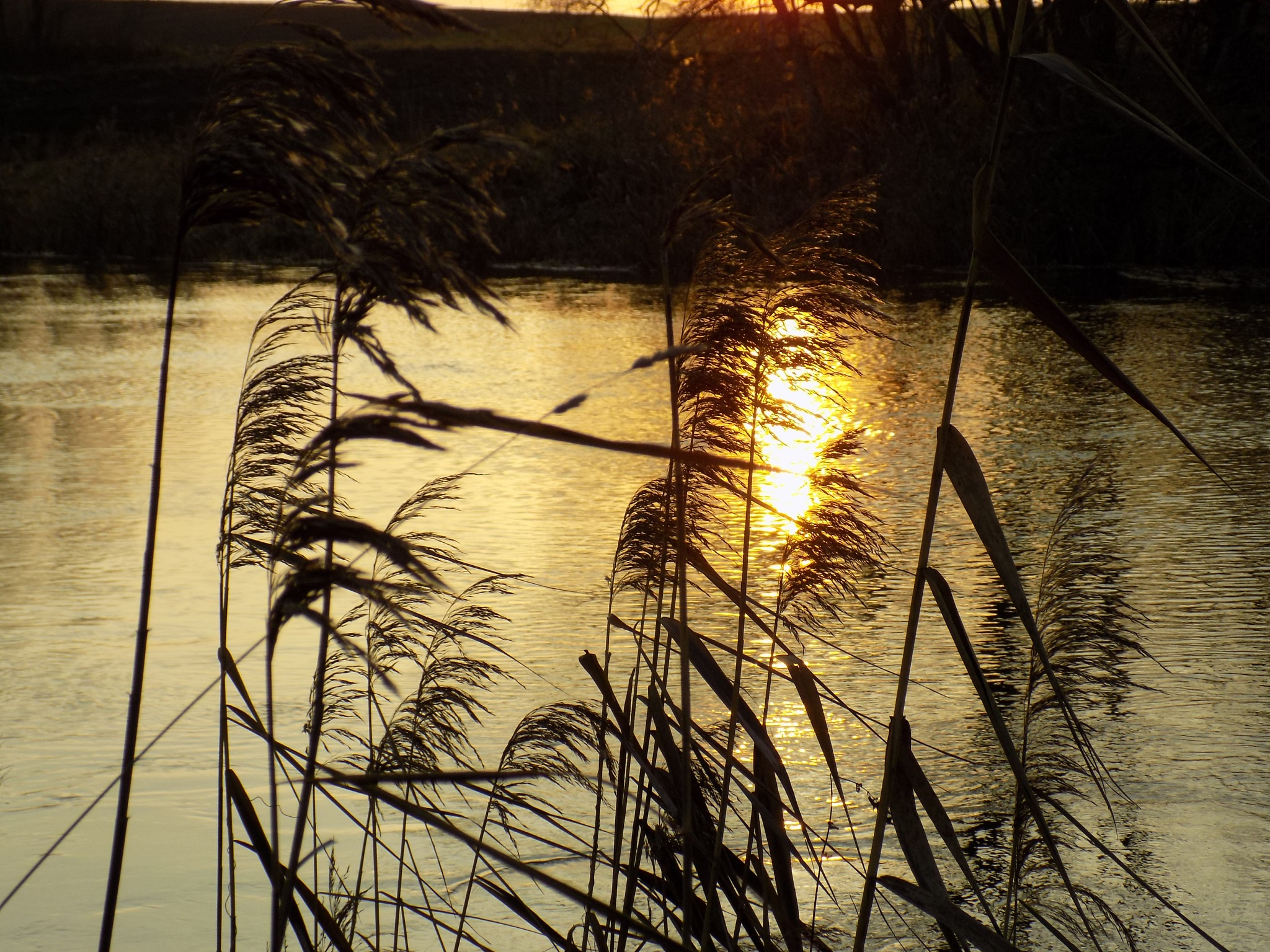 Sunset reflections by uzkuraitiene62