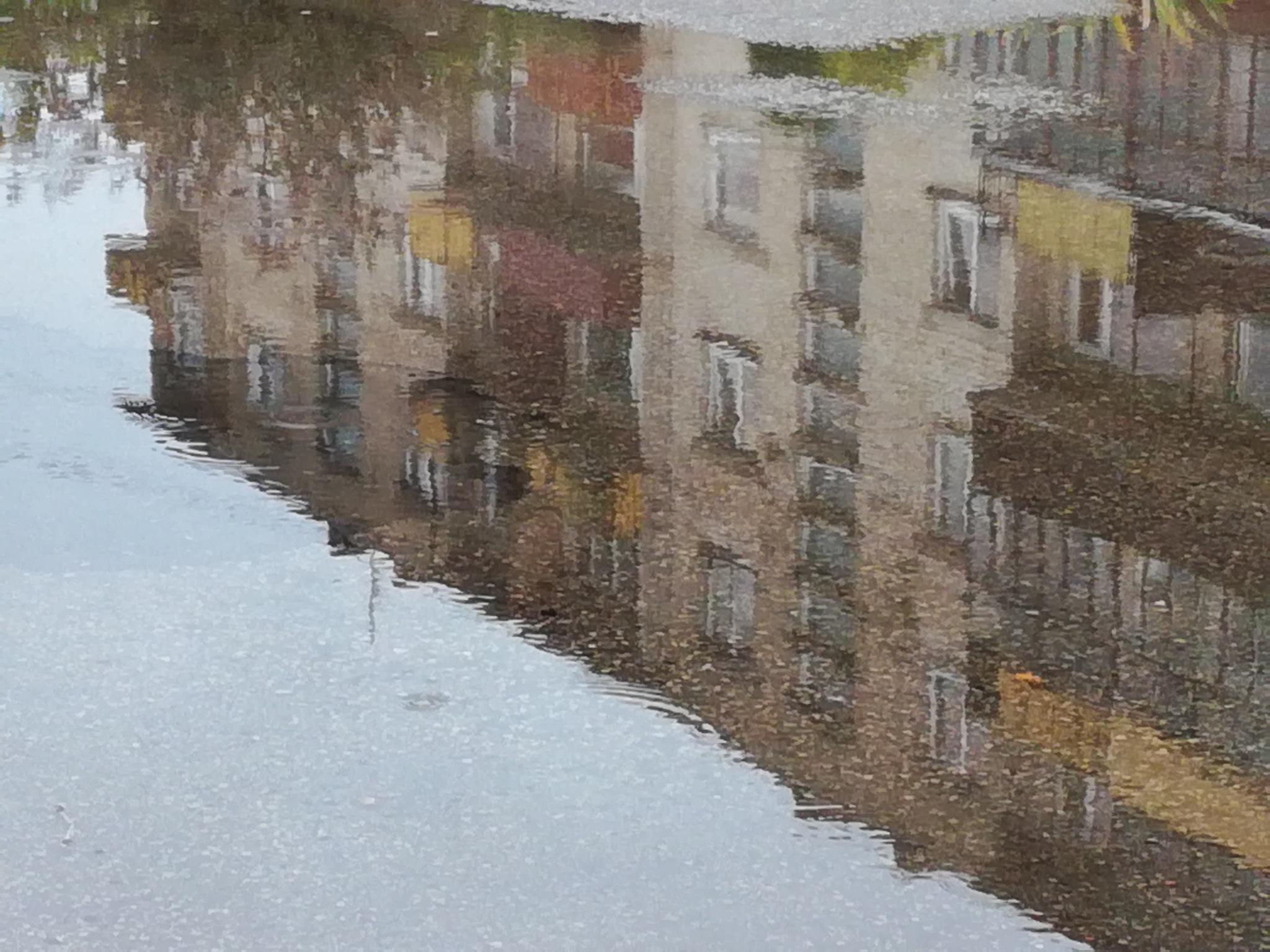 Reflection by uzkuraitiene62