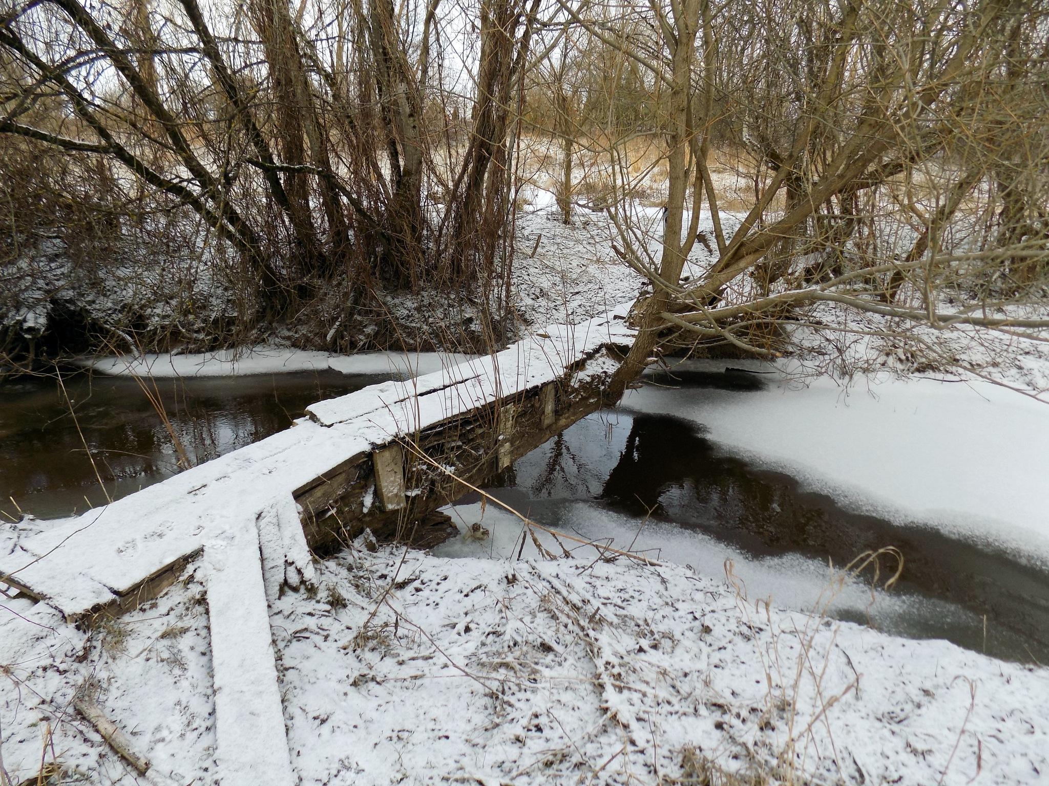 Bridge across the stream by uzkuraitiene62