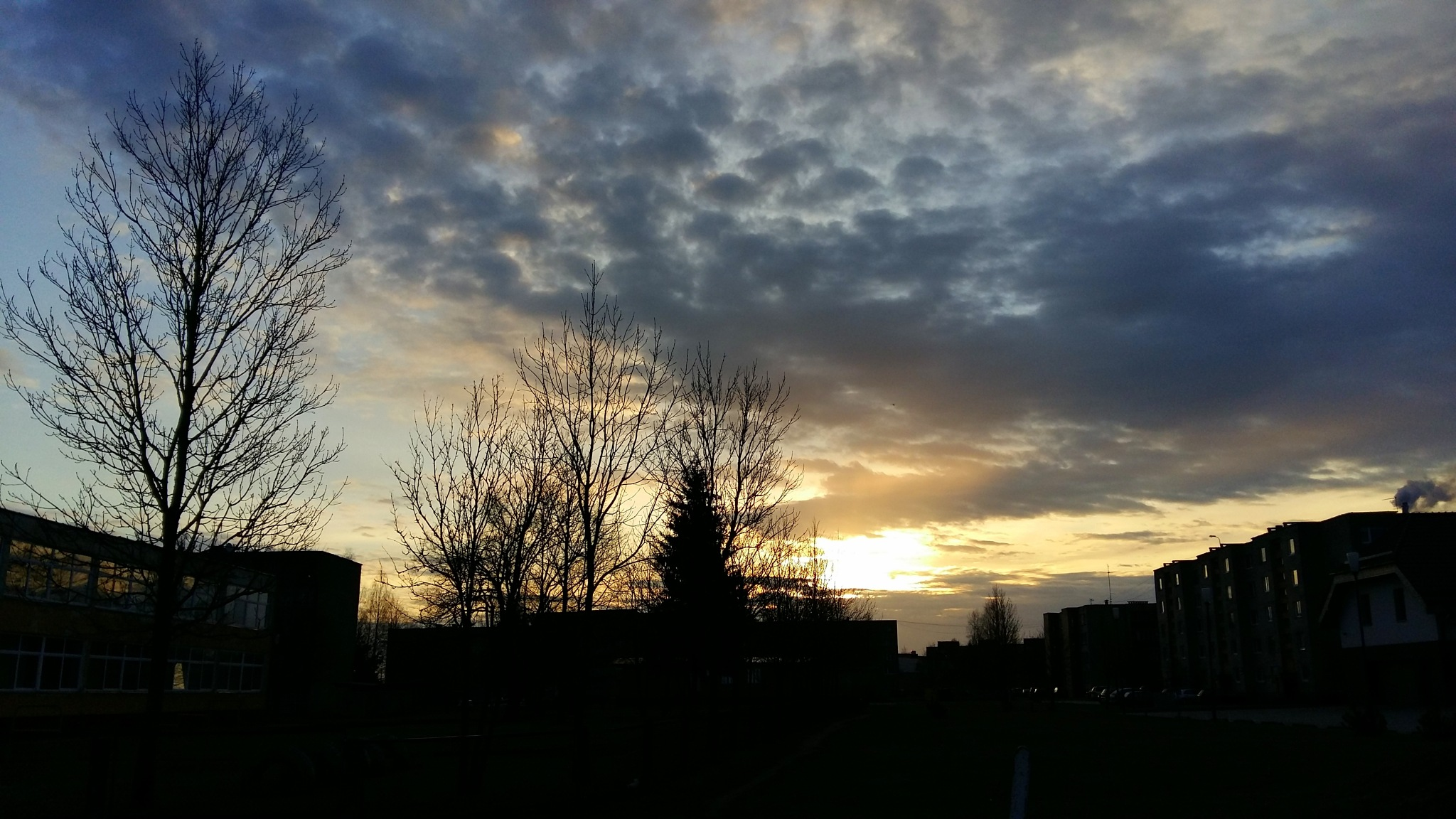 Morning by uzkuraitiene62