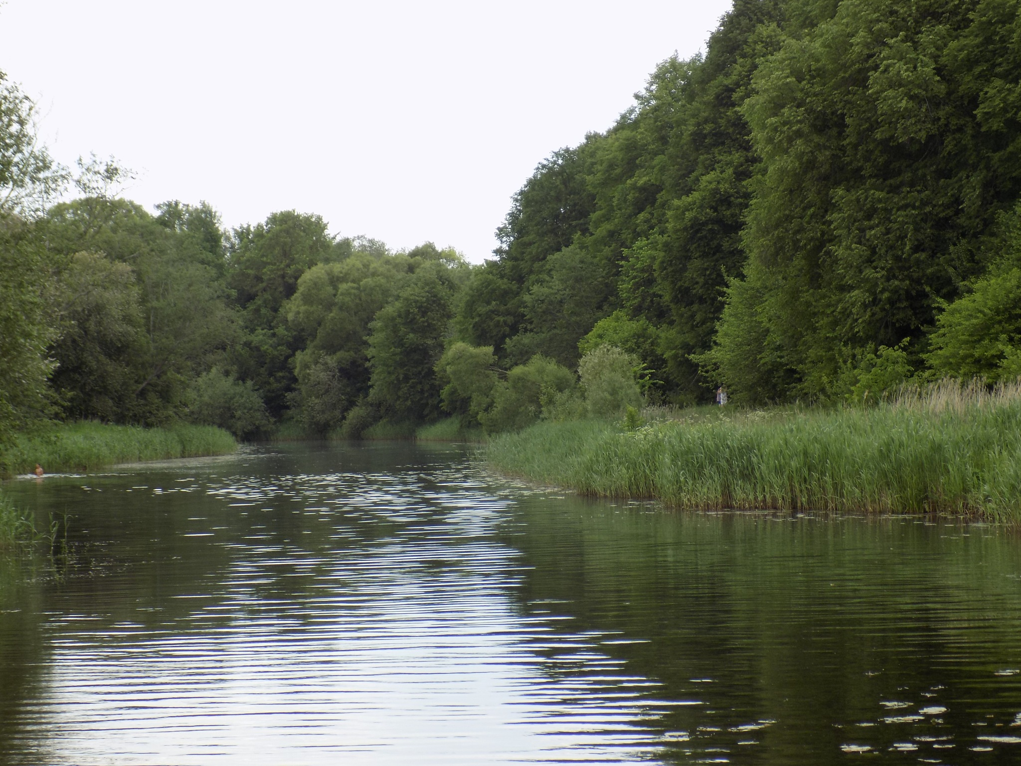 River. by uzkuraitiene62