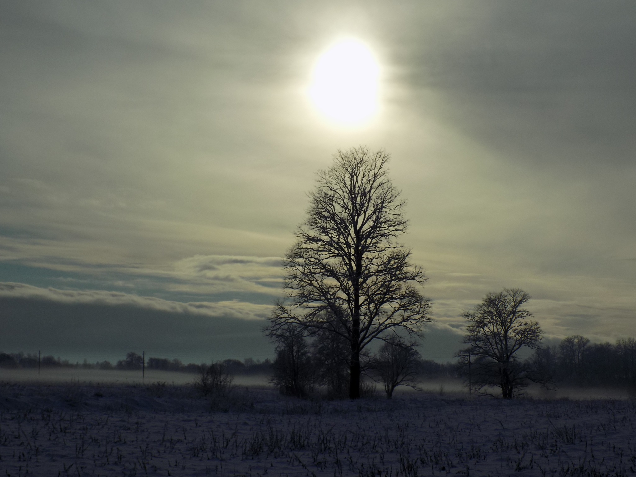 Winter by uzkuraitiene62