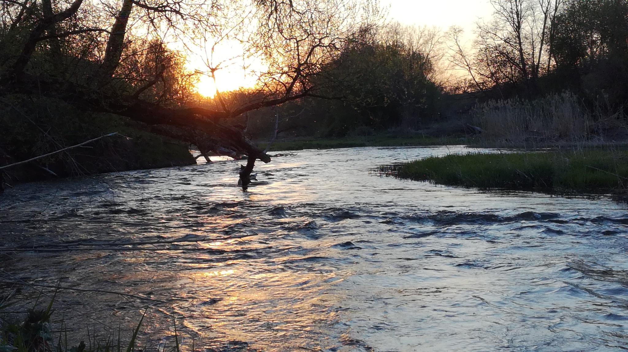 Spring evening by uzkuraitiene62