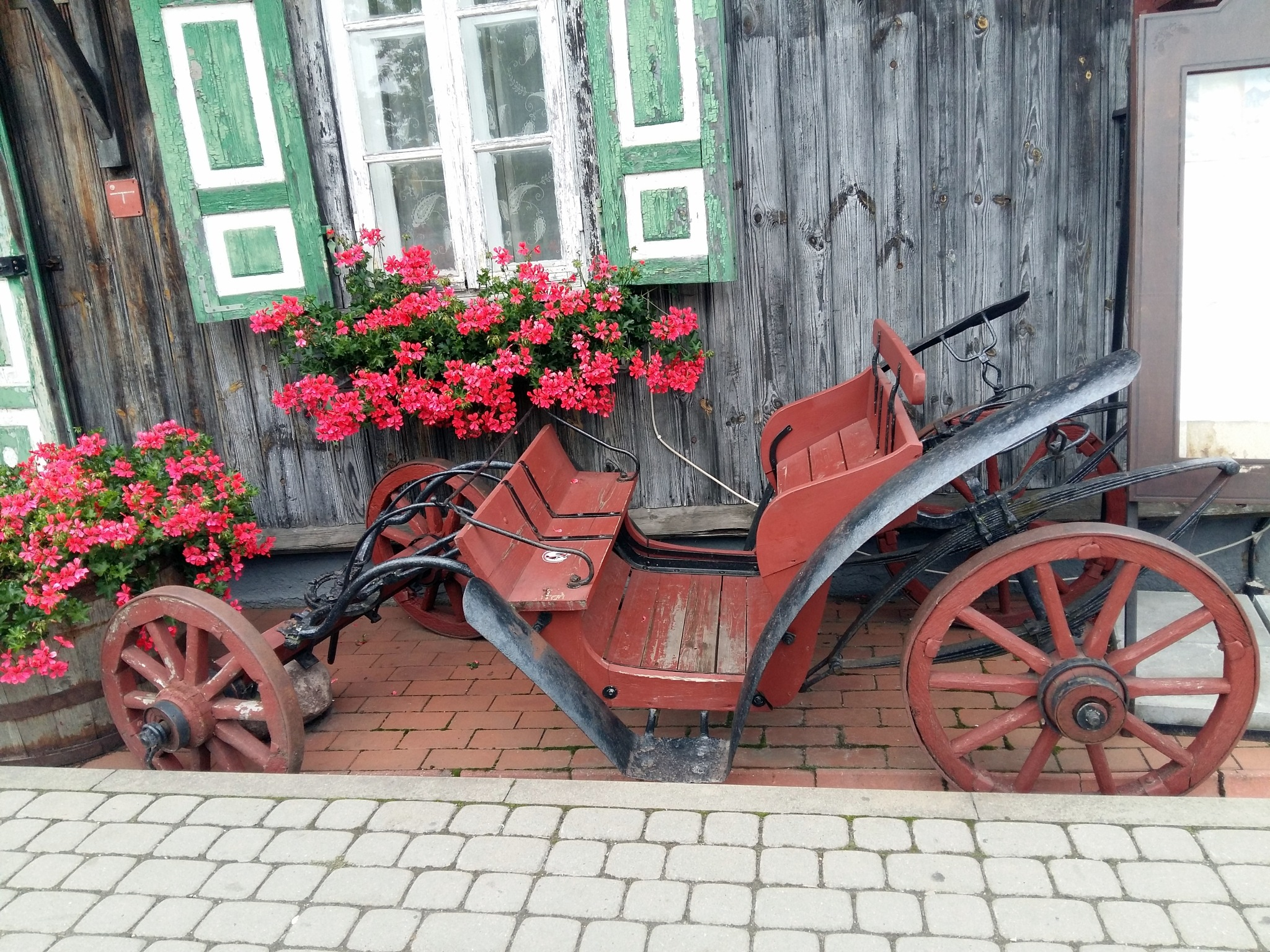 Flowers near the house. by uzkuraitiene62