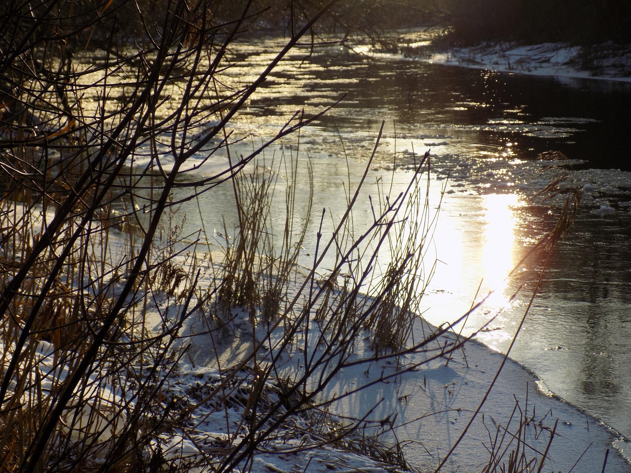 Winter wvening by uzkuraitiene62