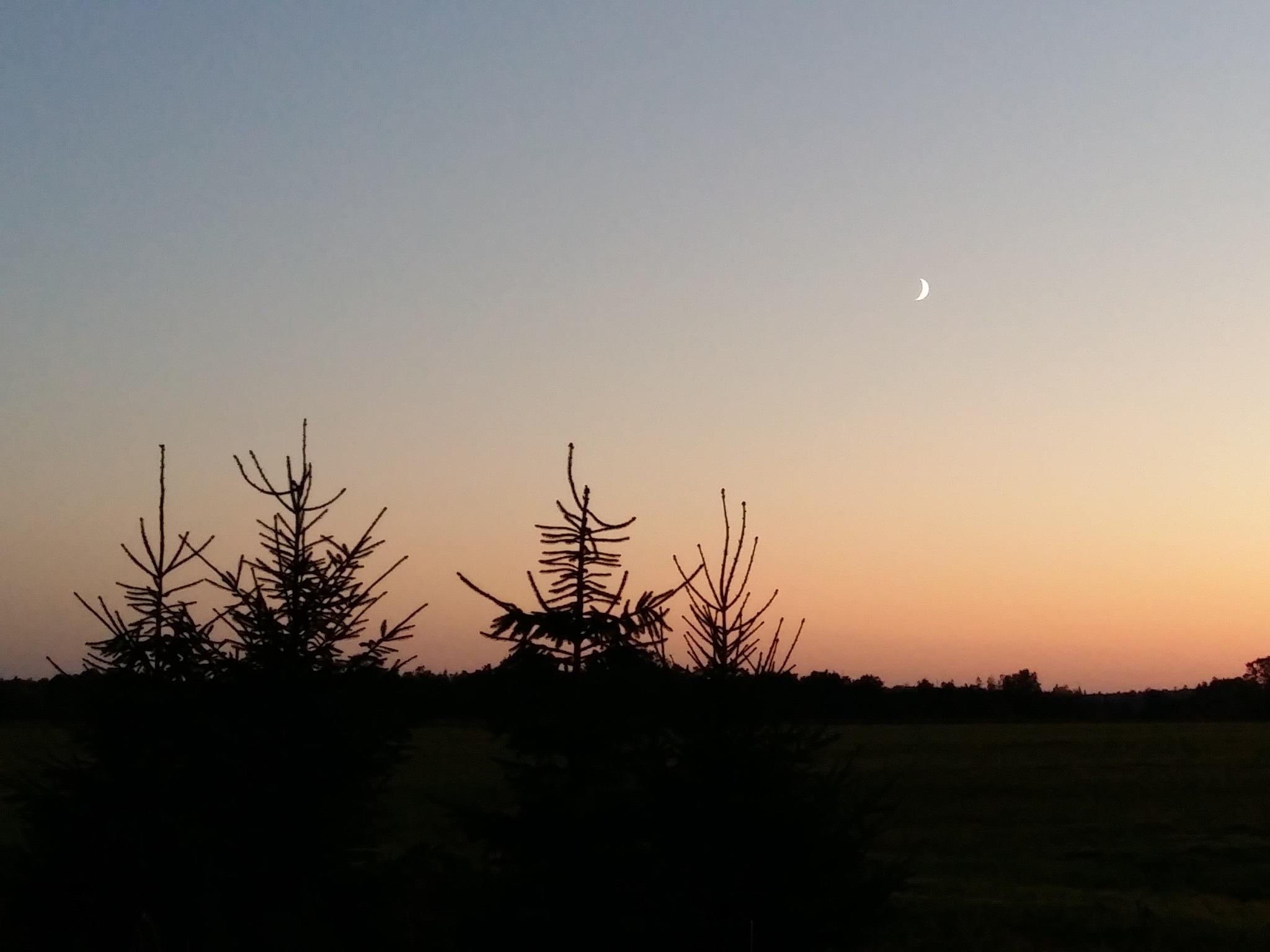 Late evening by uzkuraitiene62