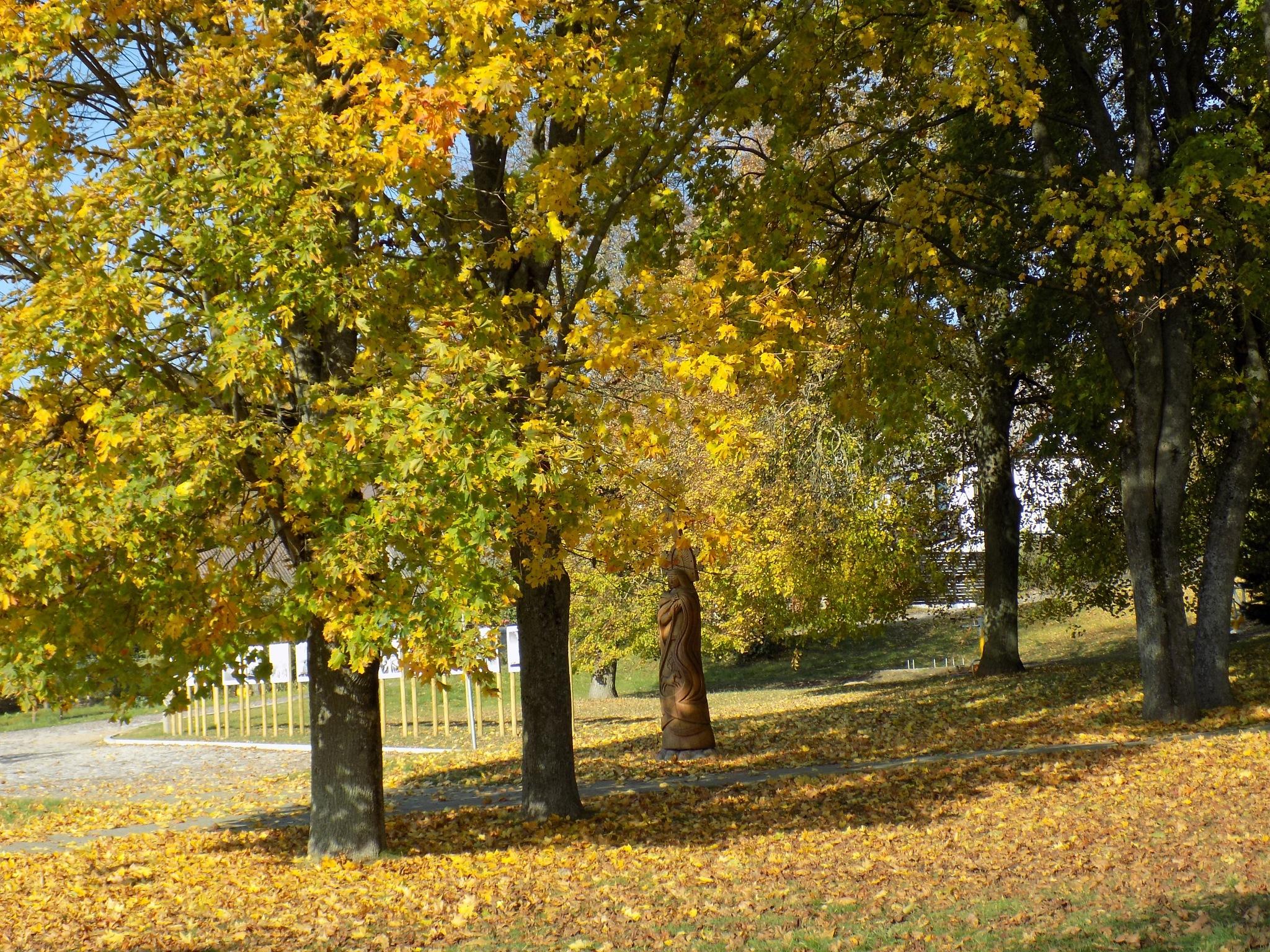 Park in the autumn by uzkuraitiene62
